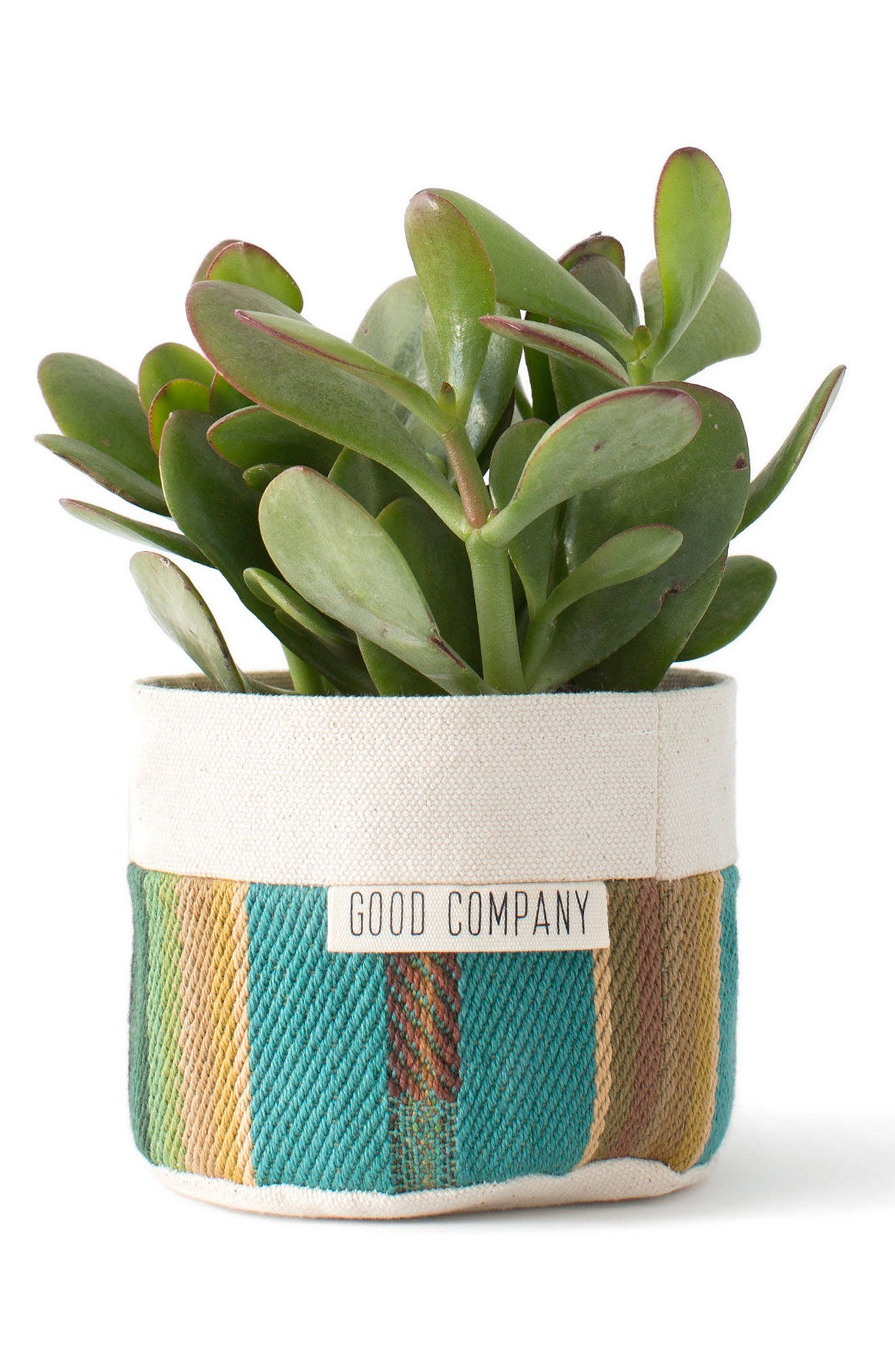 4-Inch Striped Canvas Planter,                             Alternate thumbnail 2, color,                             Tur/ Red