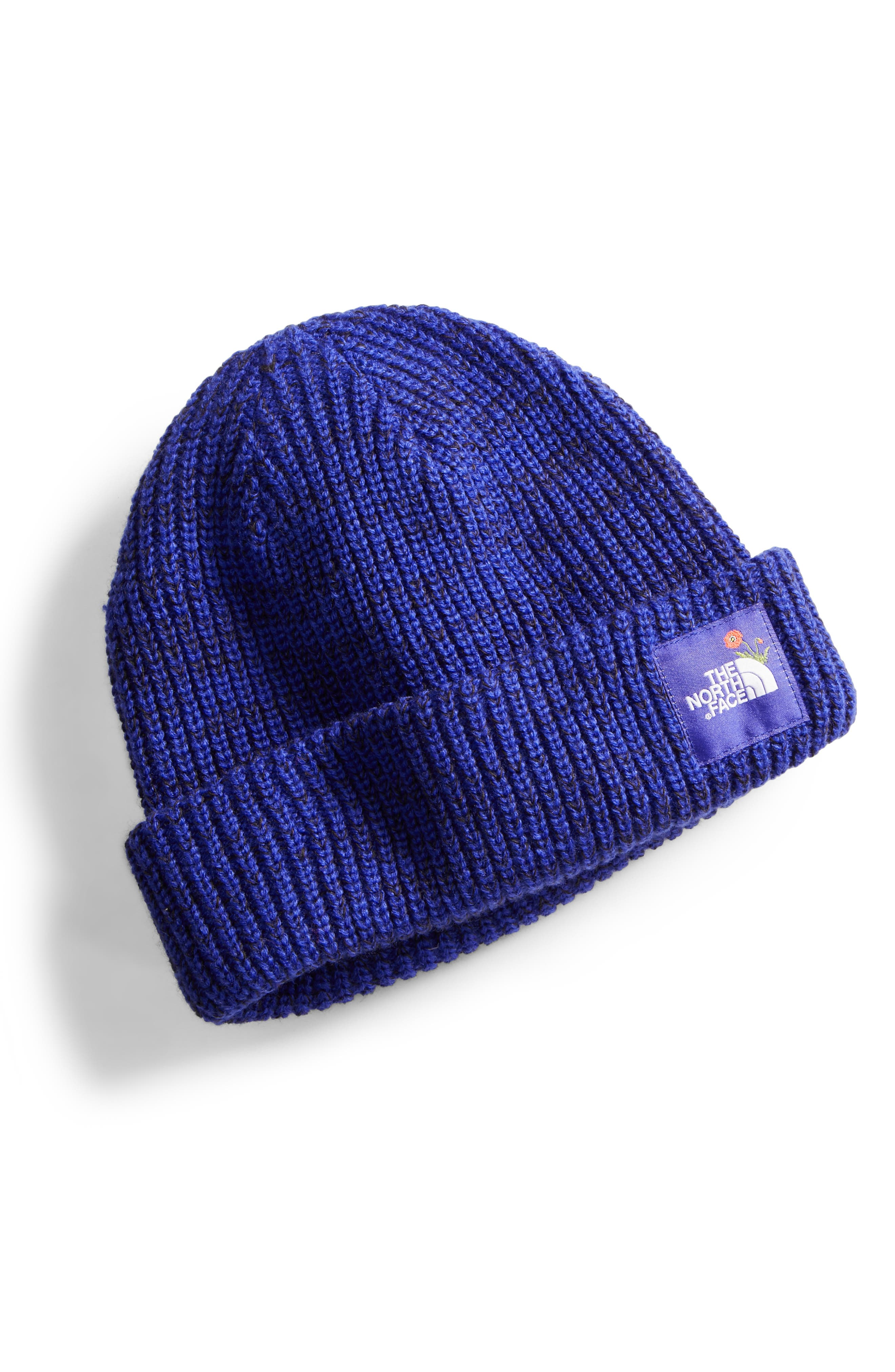 Alternate Image 1 Selected - The North Face Salty Dog Beanie