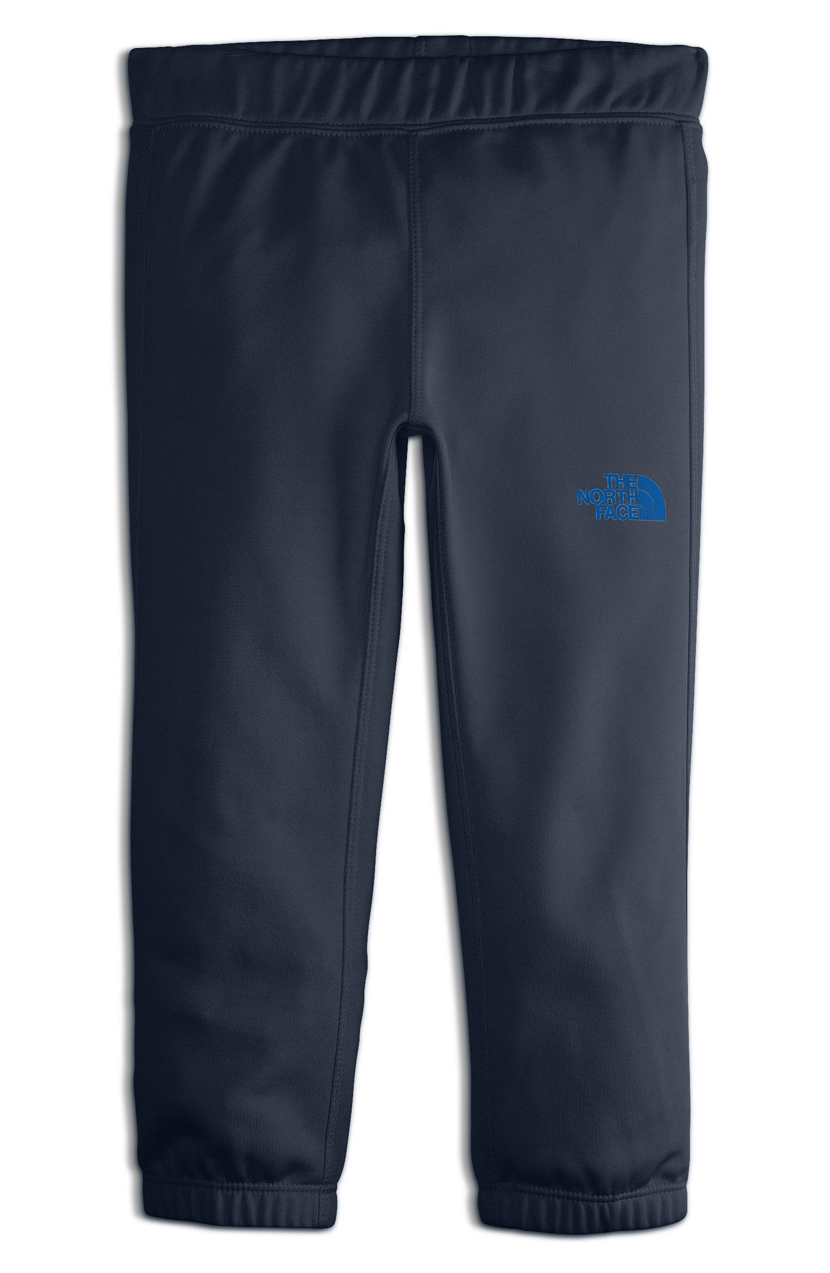 Alternate Image 1 Selected - The North Face Surgent Sweatpants (Toddler Boys & Little Boys)