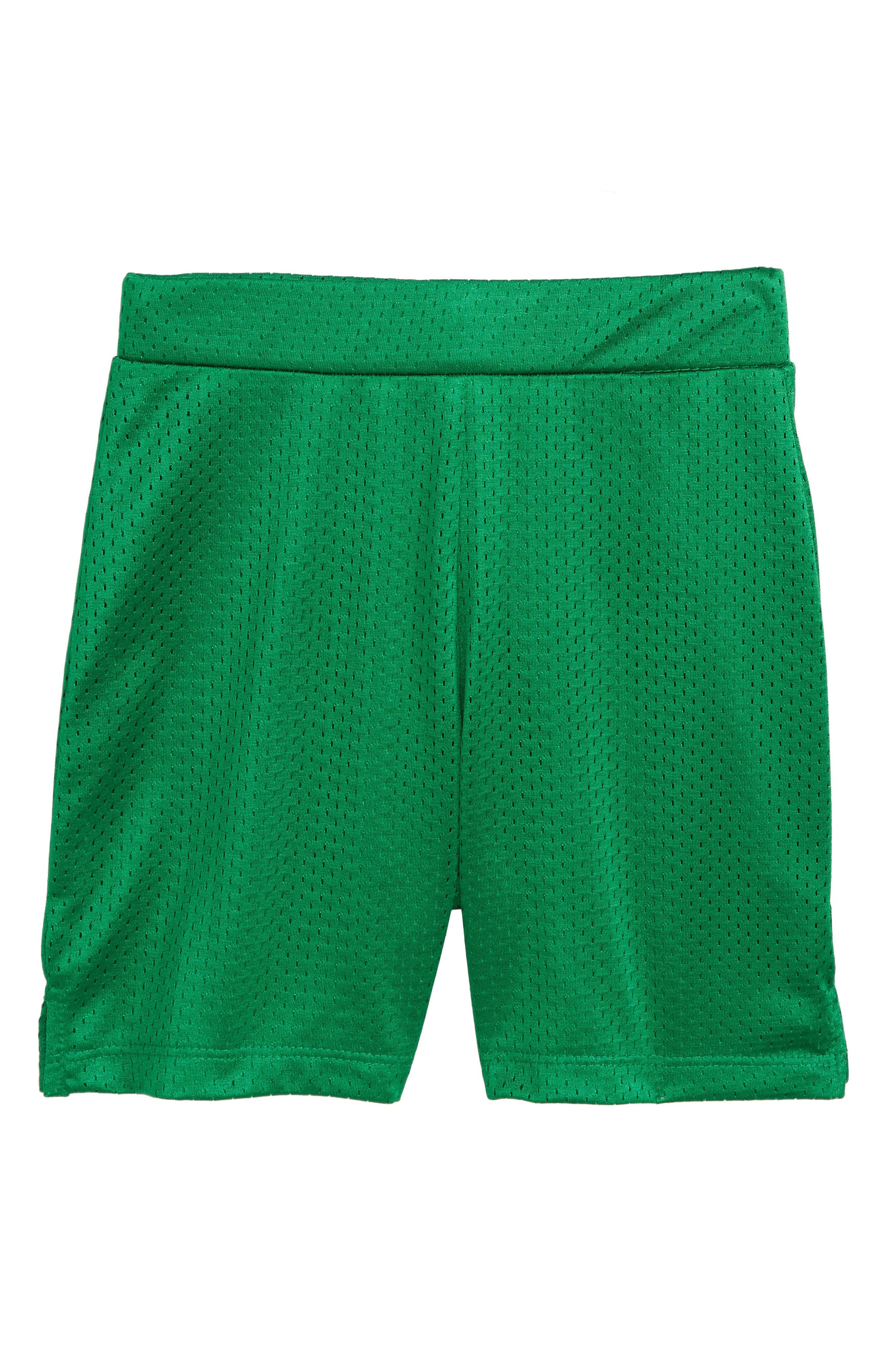 Alternate Image 1 Selected - Beru Nate Mesh Shorts (Toddler Boys & Little Boys)