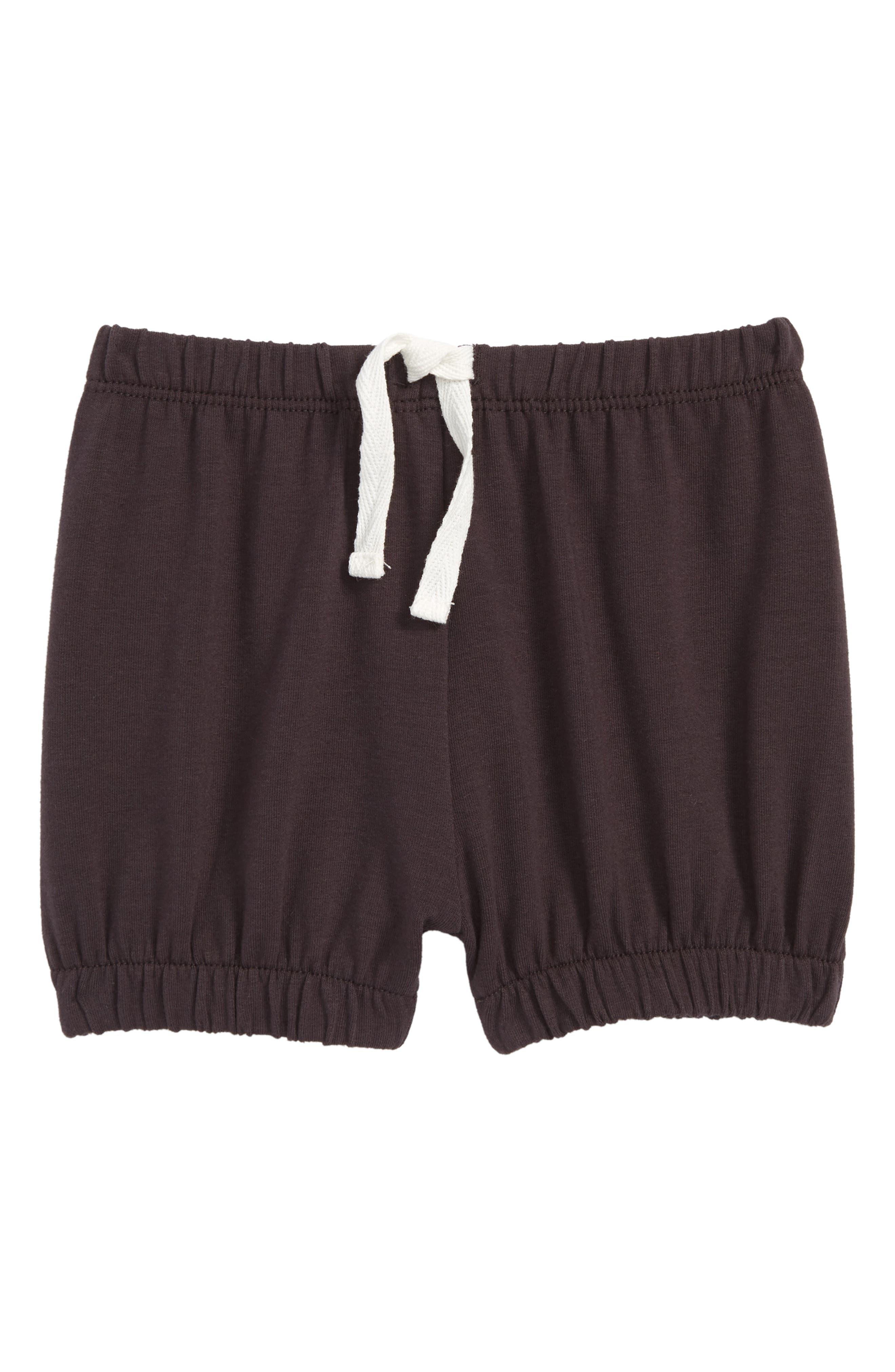 Knit Shorts,                             Main thumbnail 1, color,                             Dark Grey