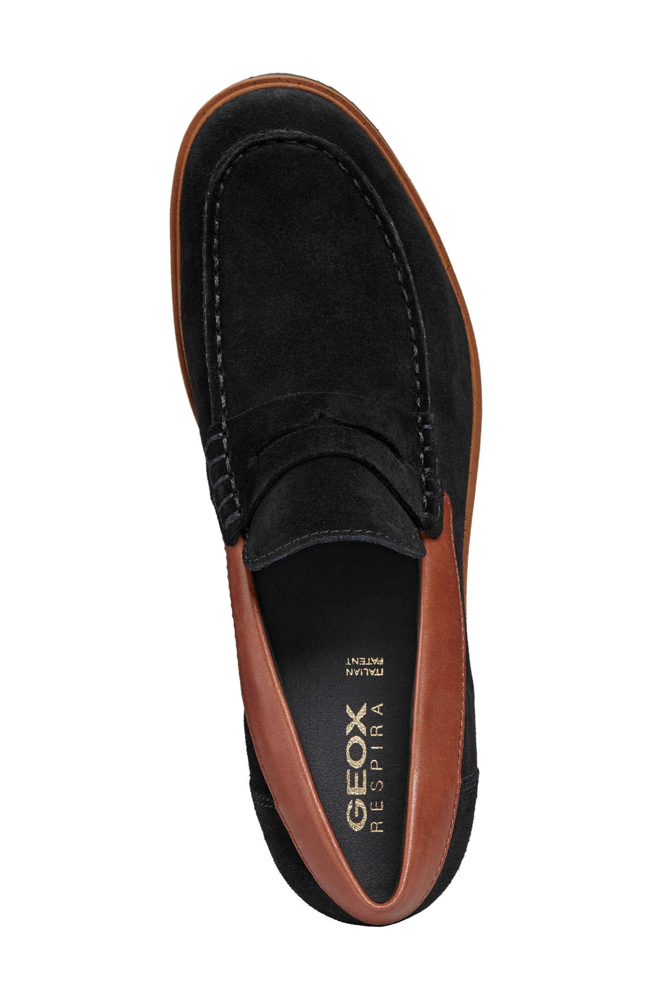 New Pluges 6 Penny Loafer,                             Alternate thumbnail 6, color,                             Black/ Brown Leather
