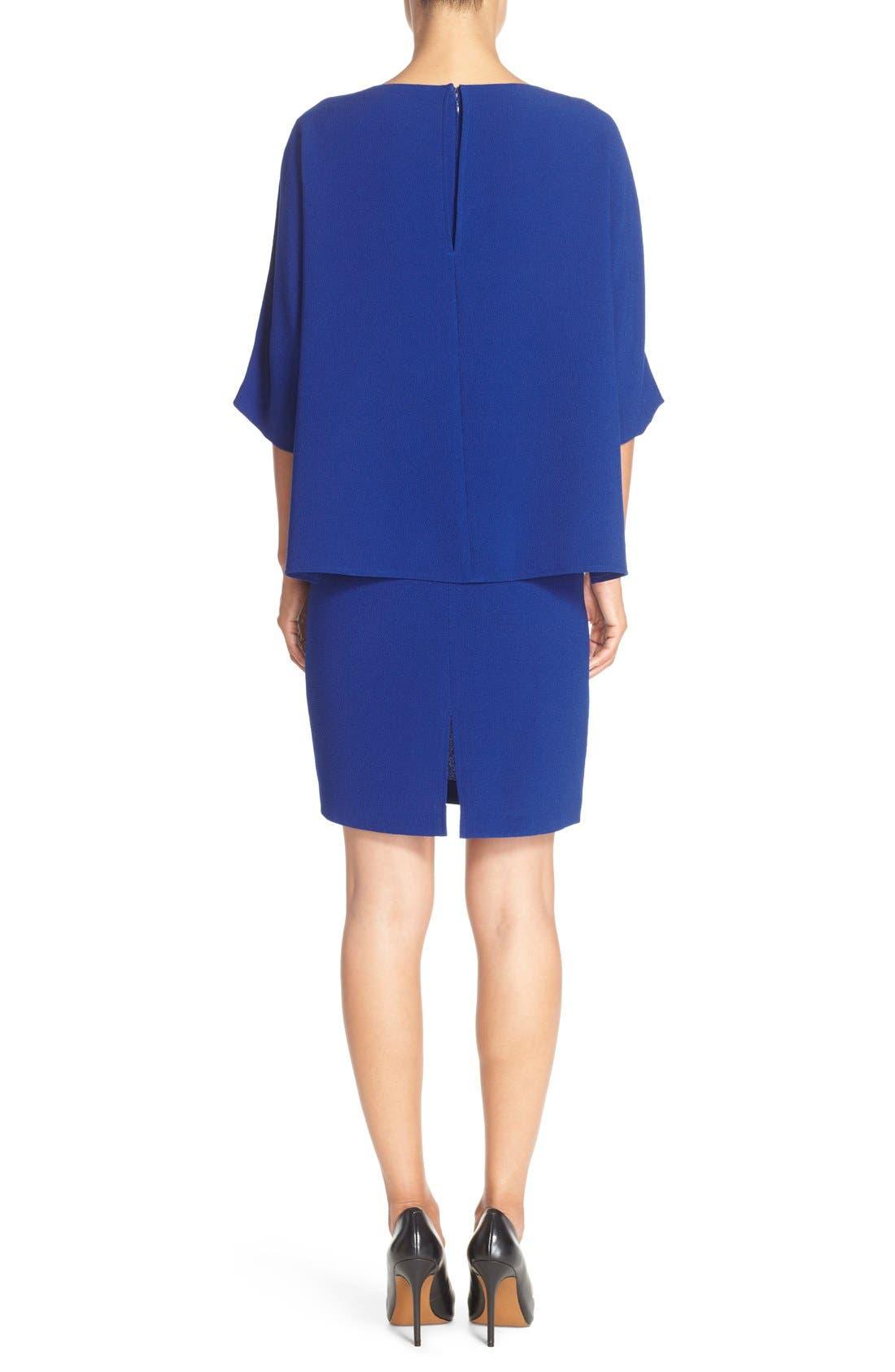 Alternate Image 2  - Adrianna Papell Draped Blouson Sheath Dress
