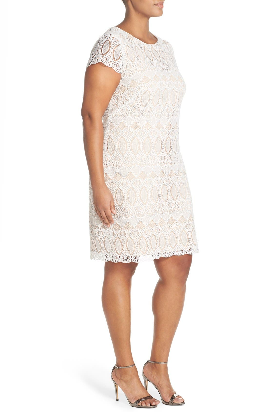 Alternate Image 3  - Eliza J Cap Sleeve Lace Shift Dress (Plus Size)