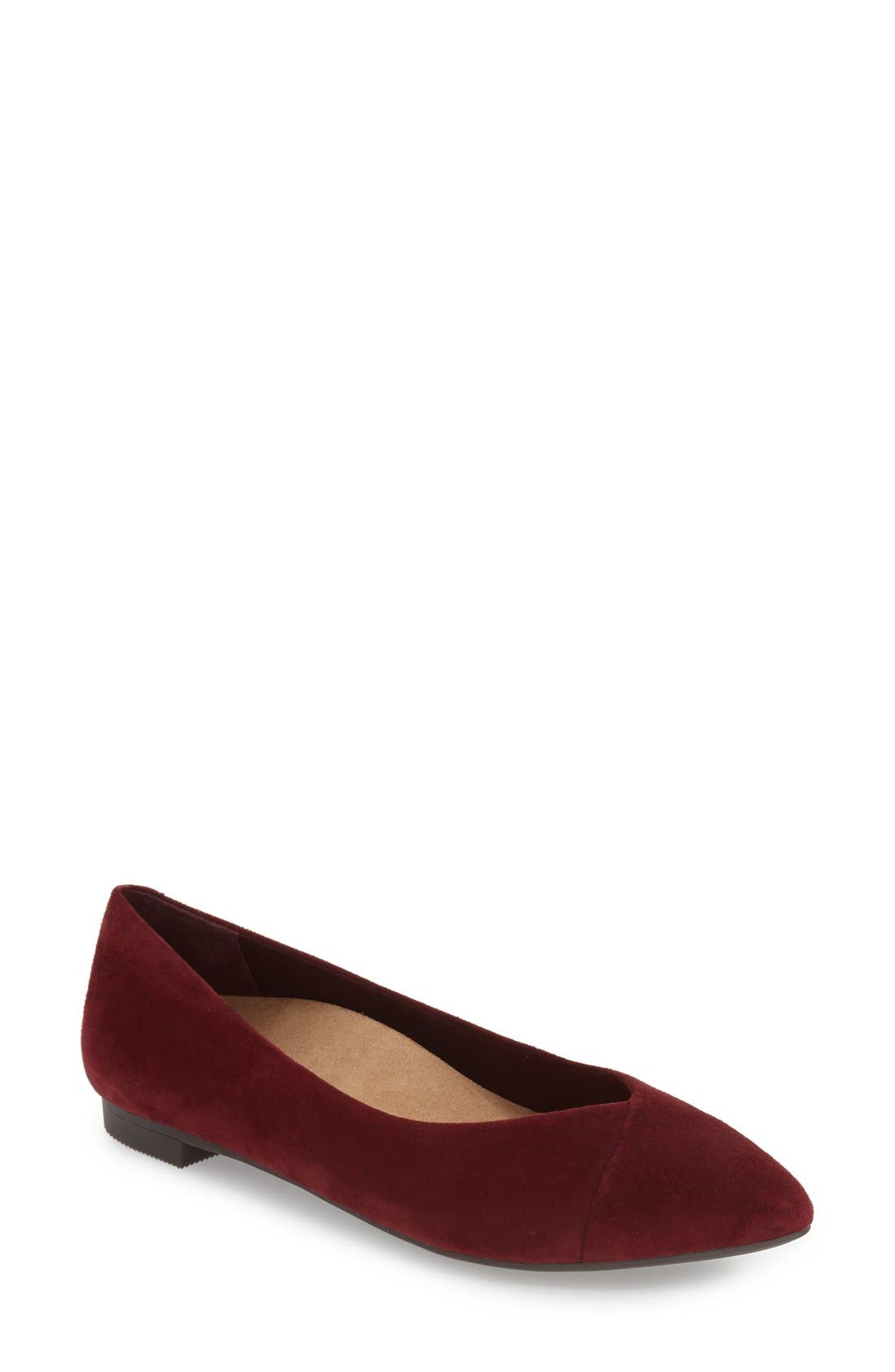 'Caballo' Pointy Toe Flat,                         Main,                         color, Merlot Suede