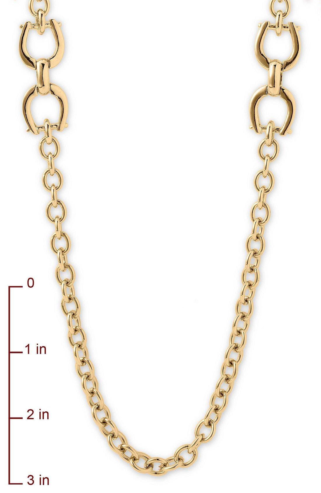 Alternate Image 2  - Lauren by Ralph Lauren 'Equestrian' Long Necklace