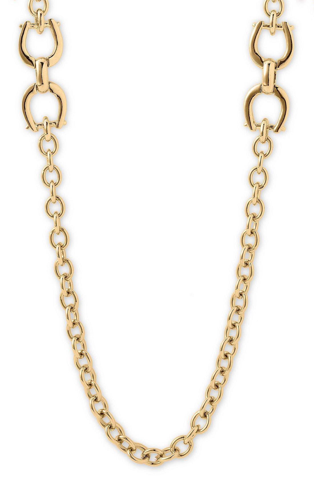 Alternate Image 1 Selected - Lauren by Ralph Lauren 'Equestrian' Long Necklace