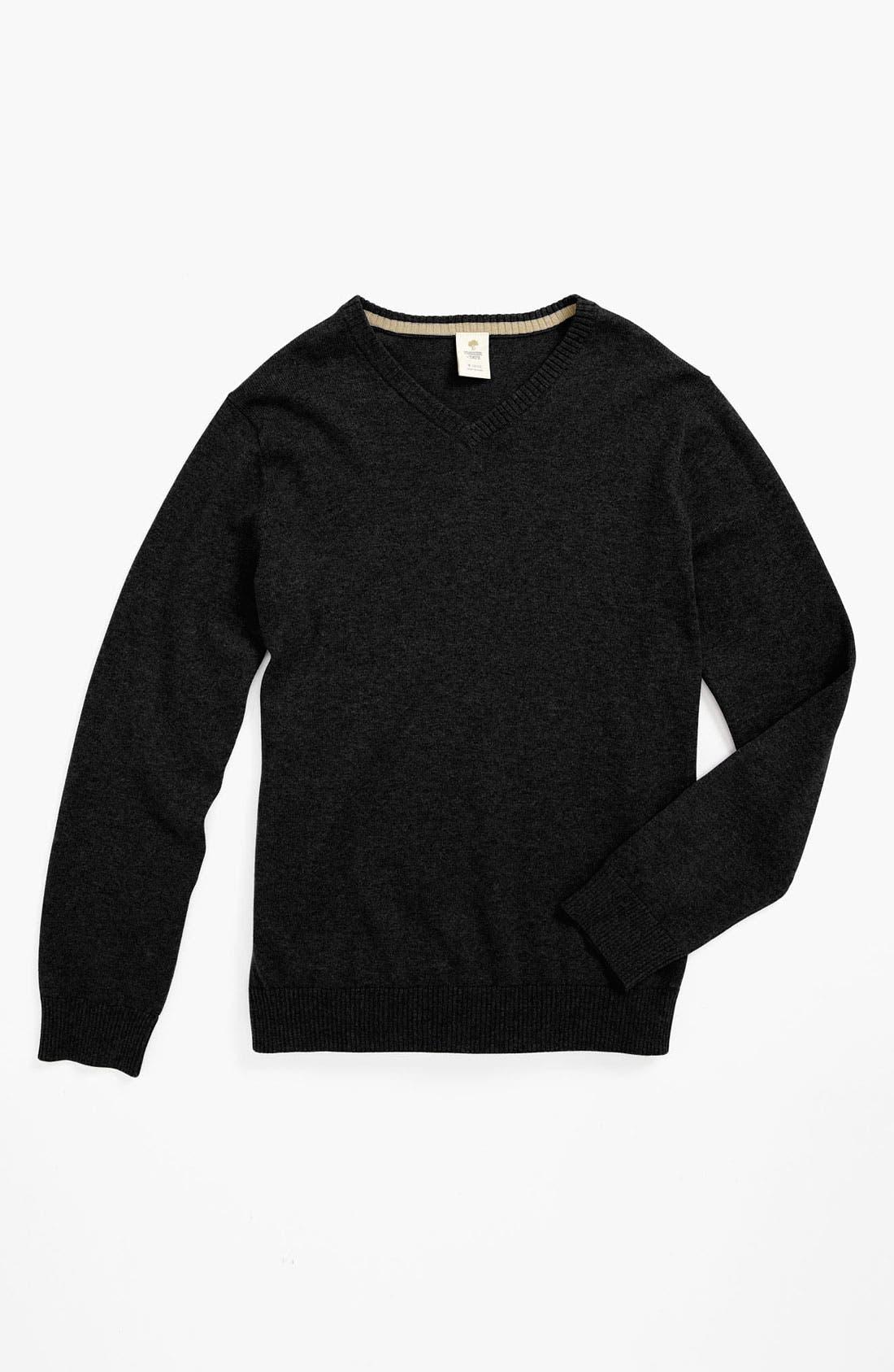 Main Image - Tucker + Tate 'Atticus' Cotton & Cashmere Sweater (Little Boys)