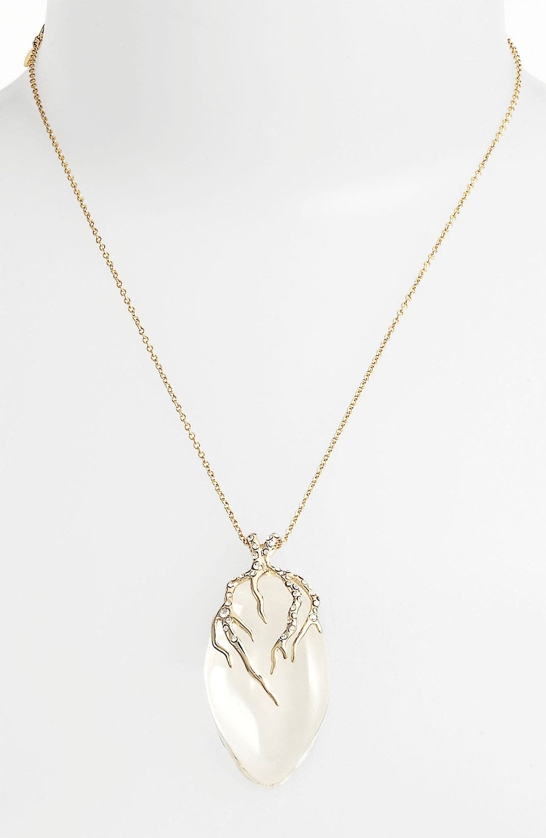 Alternate Image 1 Selected - Alexis Bittar 'Lucite® - Ophelia' Small Vine Pendant Necklace