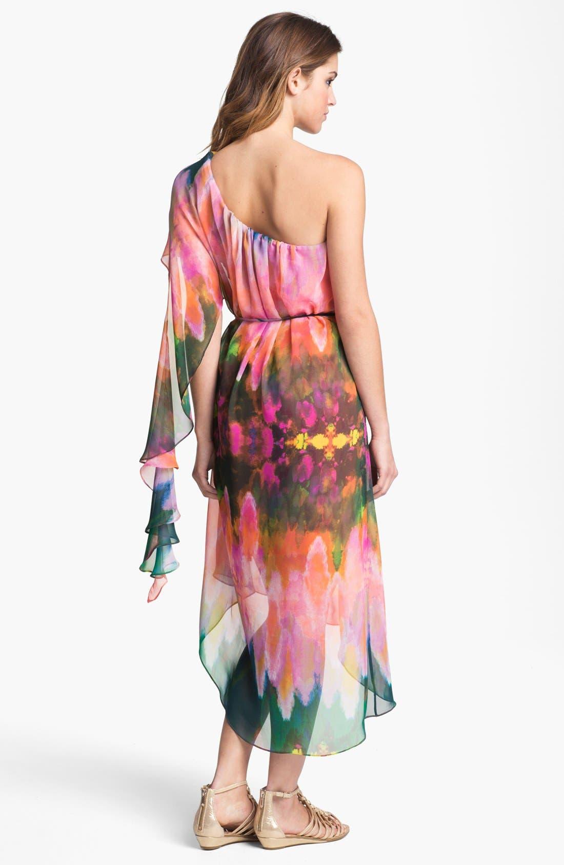 Alternate Image 2  - Abi Ferrin 'Hera' One Shoulder Print Chiffon Dress