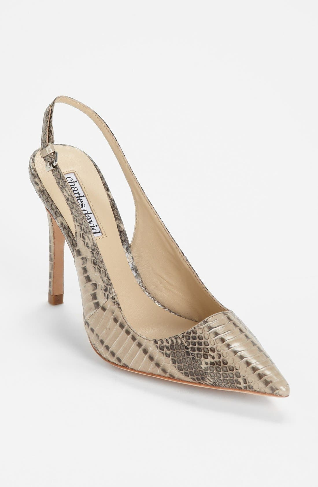 Alternate Image 1 Selected - Charles David 'Faina' Pump (Online Only)
