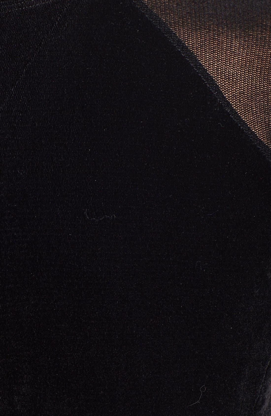 Alternate Image 3  - Theyskens' Theory 'Chupi Forea' Velvet Dress