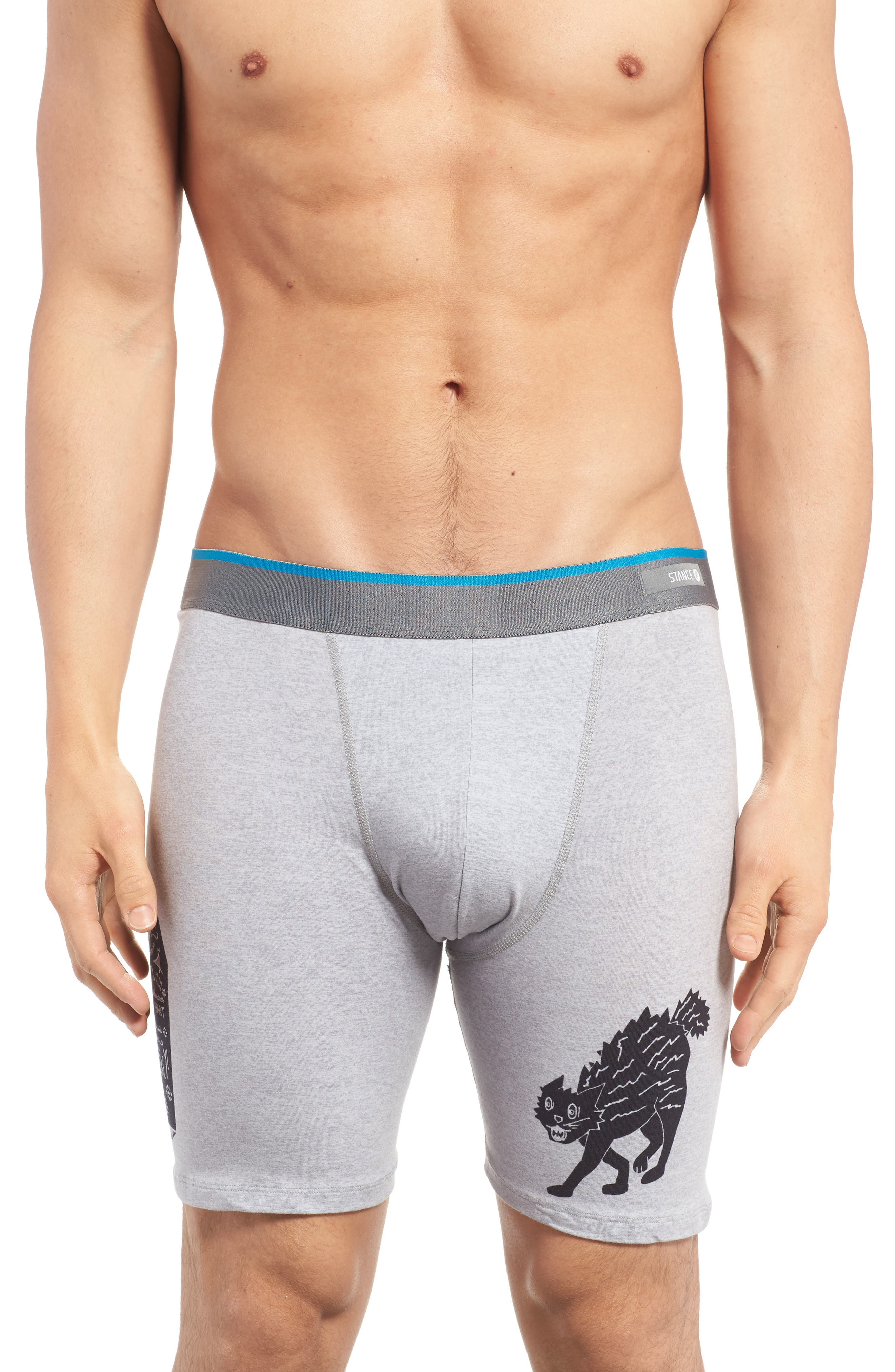 Alternate Image 1 Selected - Stance Del Mar - Whiskey Cat Boxer Briefs