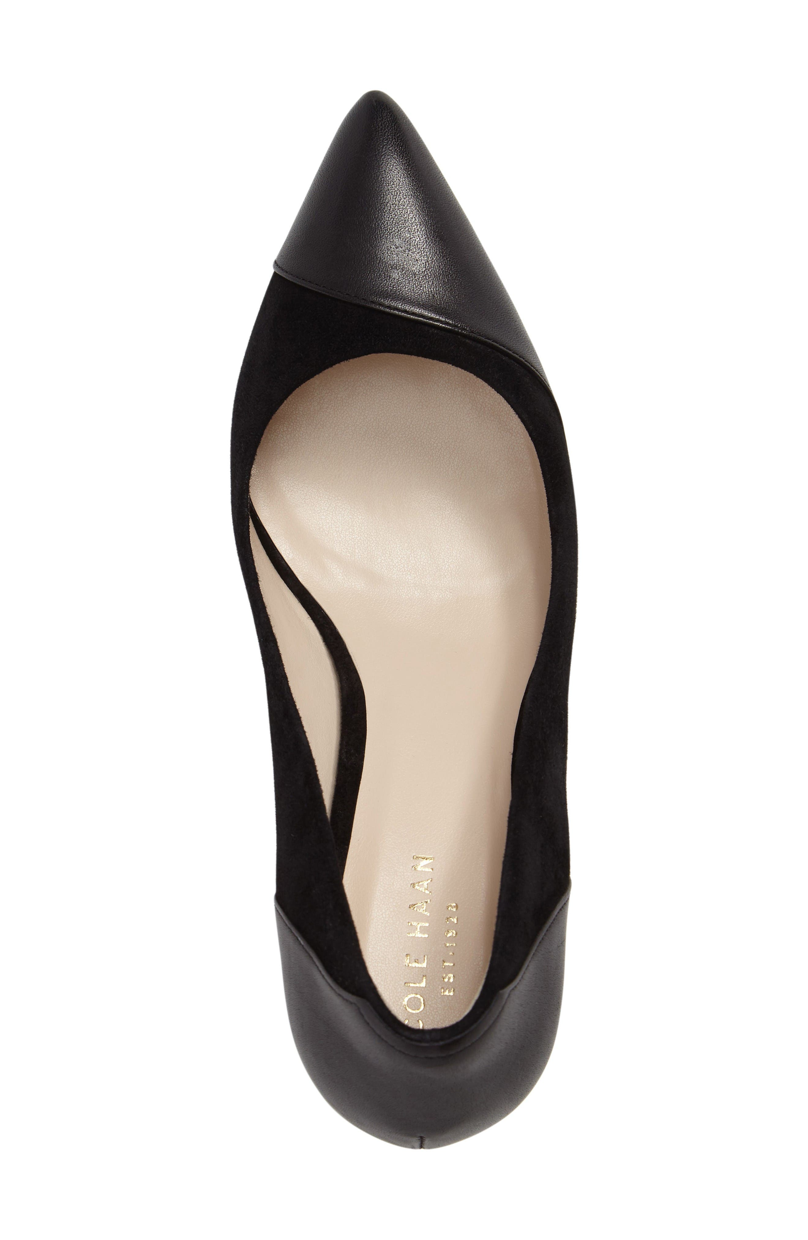 Shayla Pointy Toe Pump,                             Alternate thumbnail 5, color,                             Black Suede