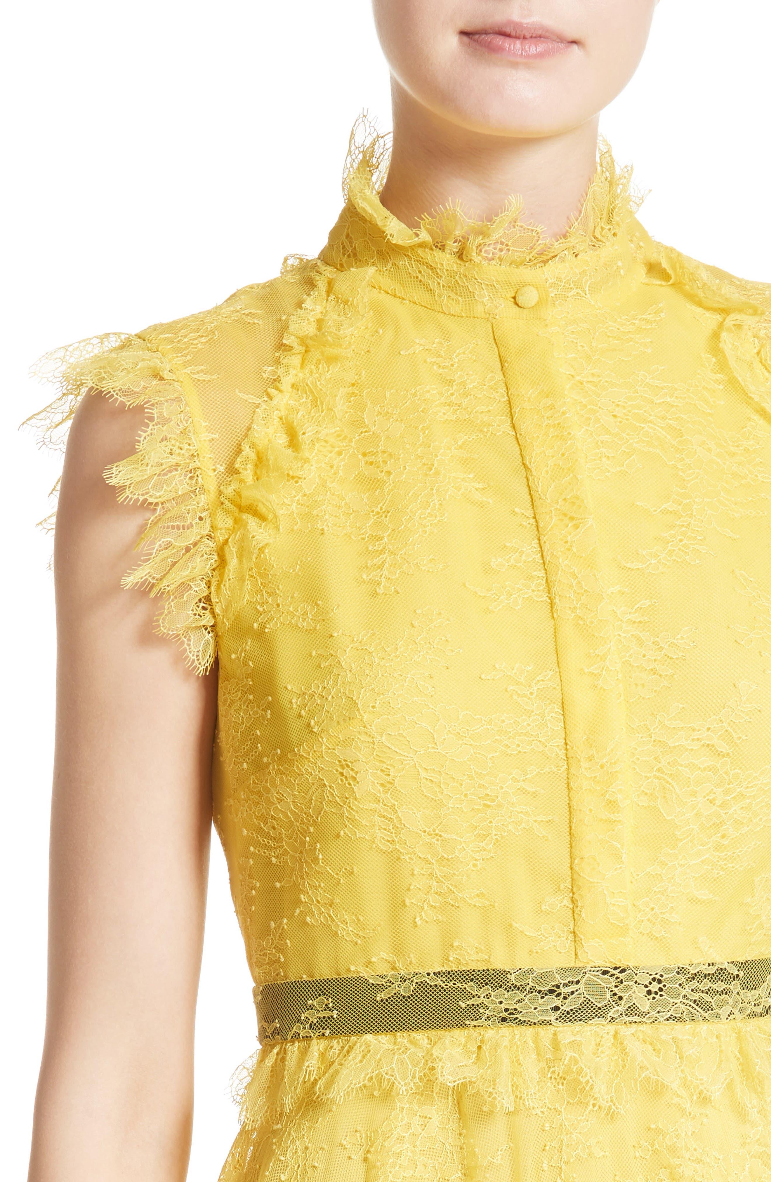 Alternate Image 6  - Erdem Tulle Lace Dress