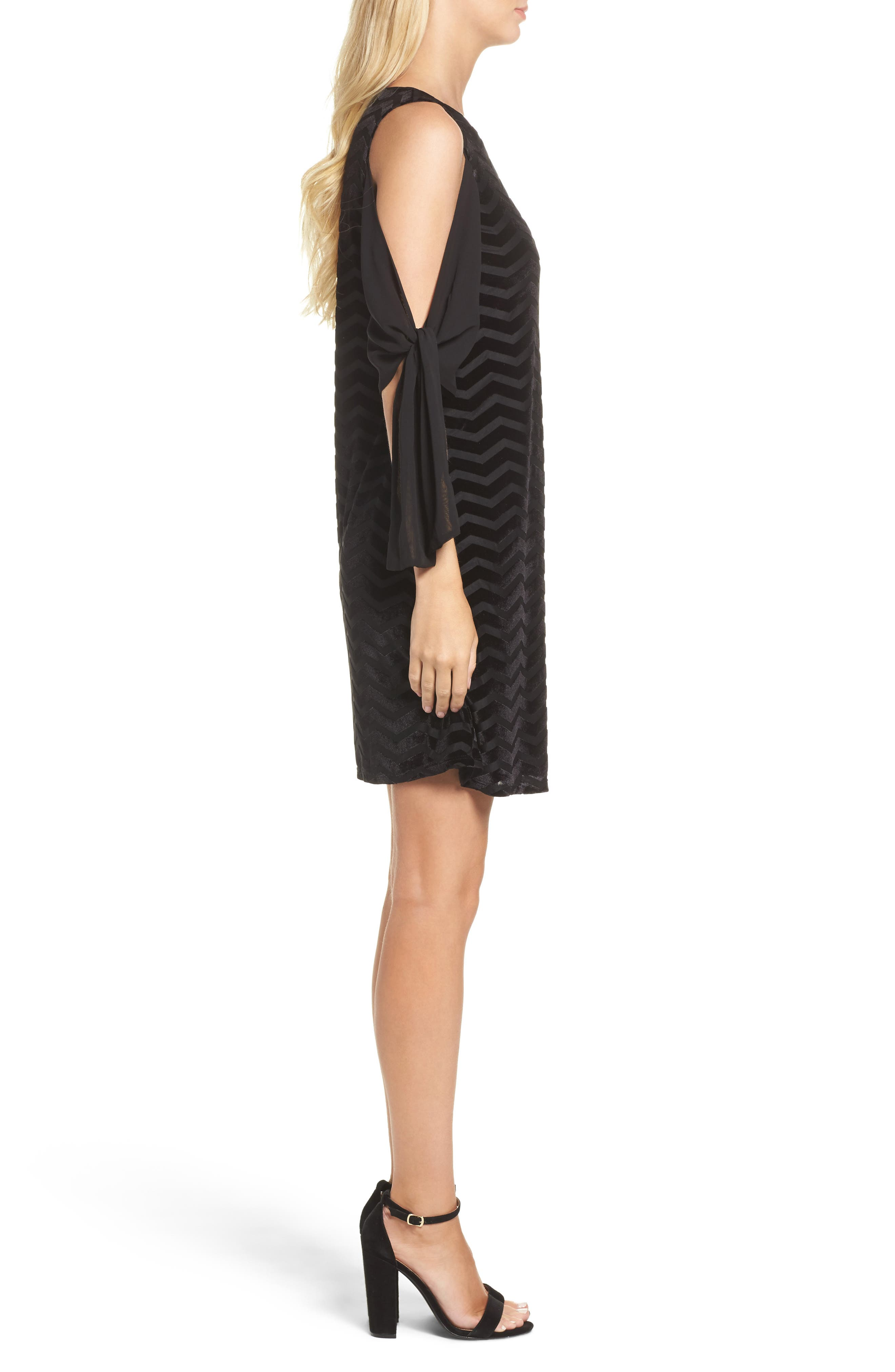 Alternate Image 3  - Taylor Dresses Chiffon Sleeve Velvet Burnout Shift Dress