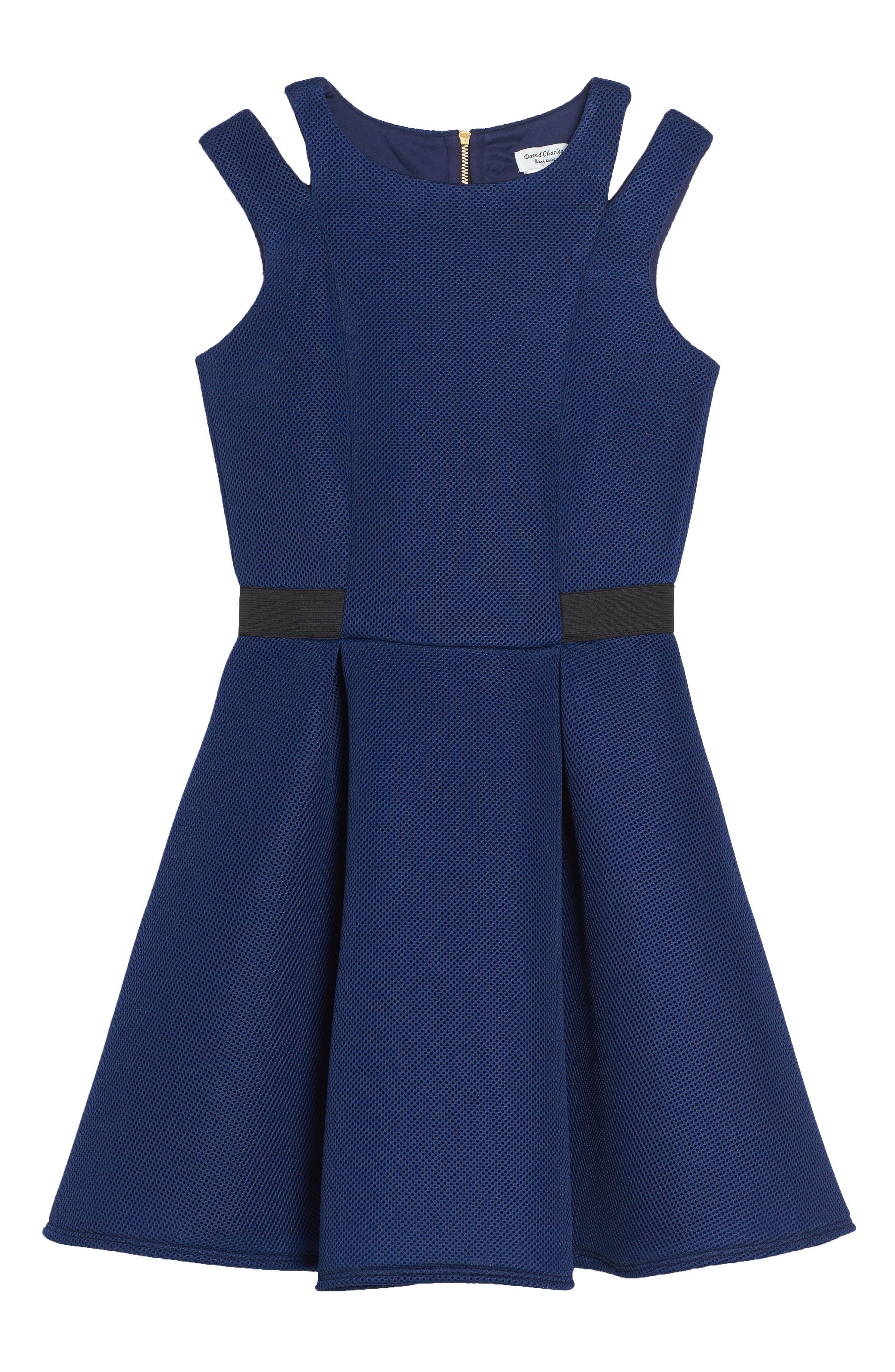 Elastic Techno Skater Dress,                         Main,                         color, Blue