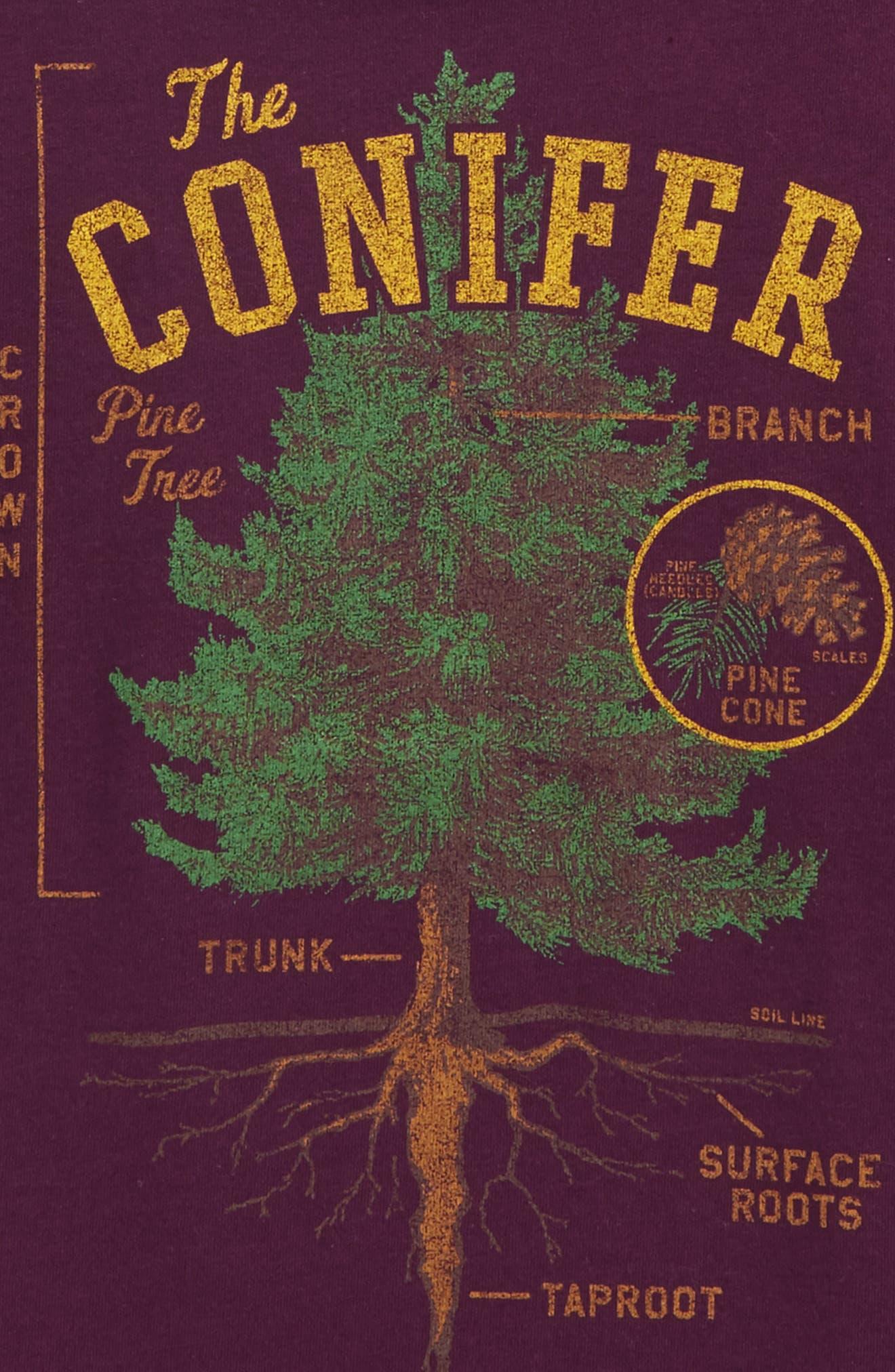 The Conifer Graphic T-Shirt,                             Alternate thumbnail 3, color,                             Plum