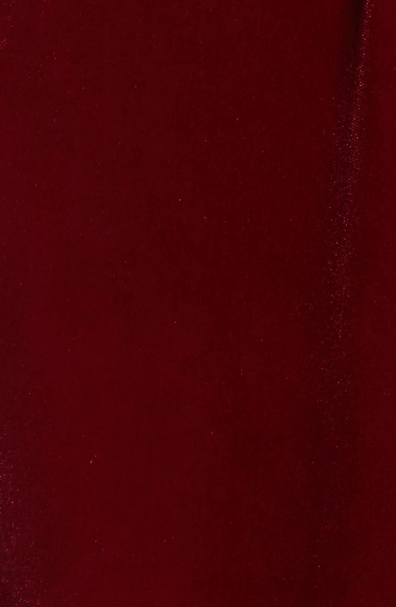 Velvet Slipdress,                             Alternate thumbnail 5, color,                             Wine