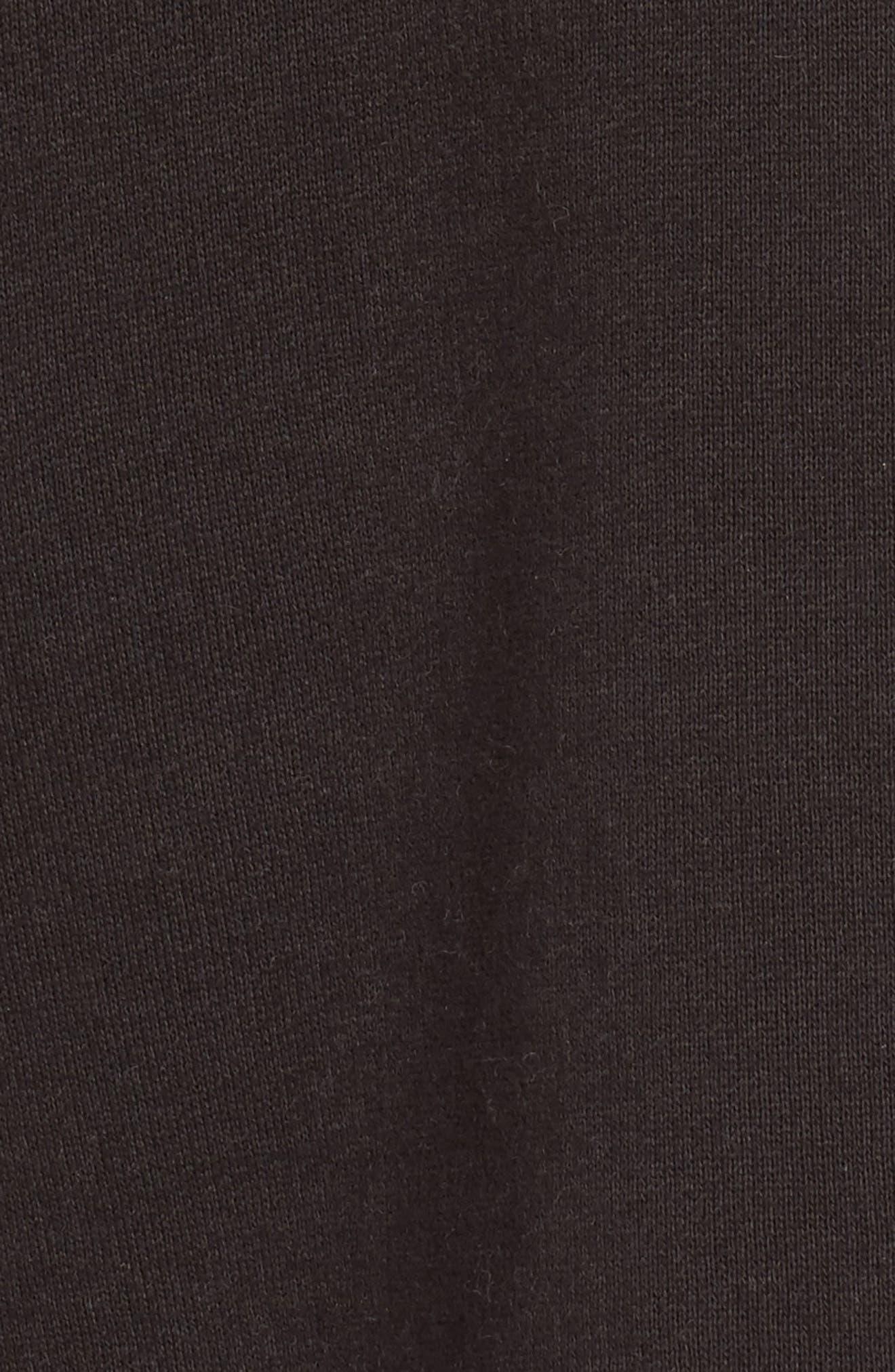 Fleece Lined Hoodie,                             Alternate thumbnail 5, color,                             Carbon