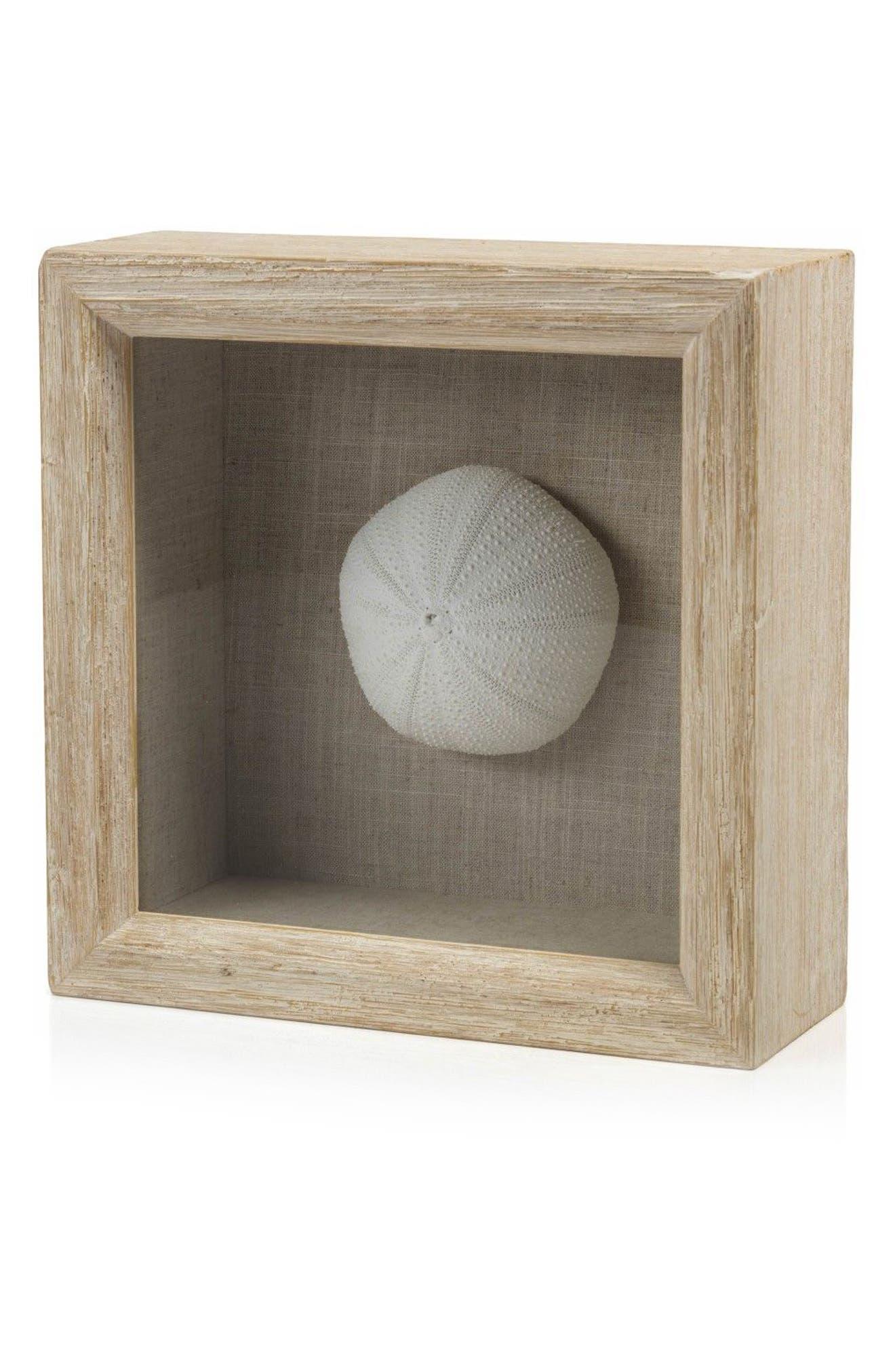 Sea Urchin Shadow Box Art,                             Main thumbnail 1, color,                             Off-White/ Brown/ Beige