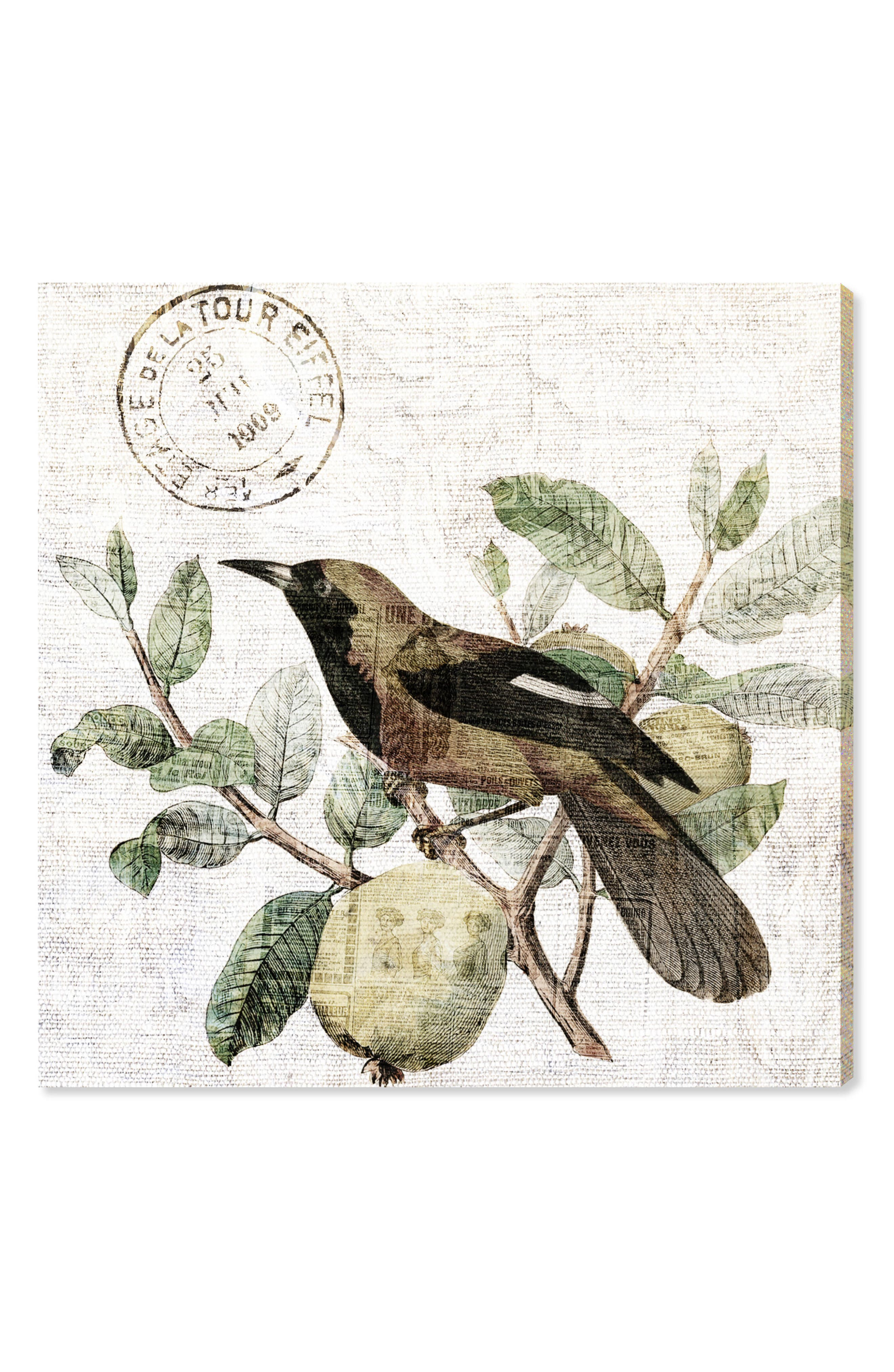 Oliver Gal Bird in the Tree Light Canvas Wall Art