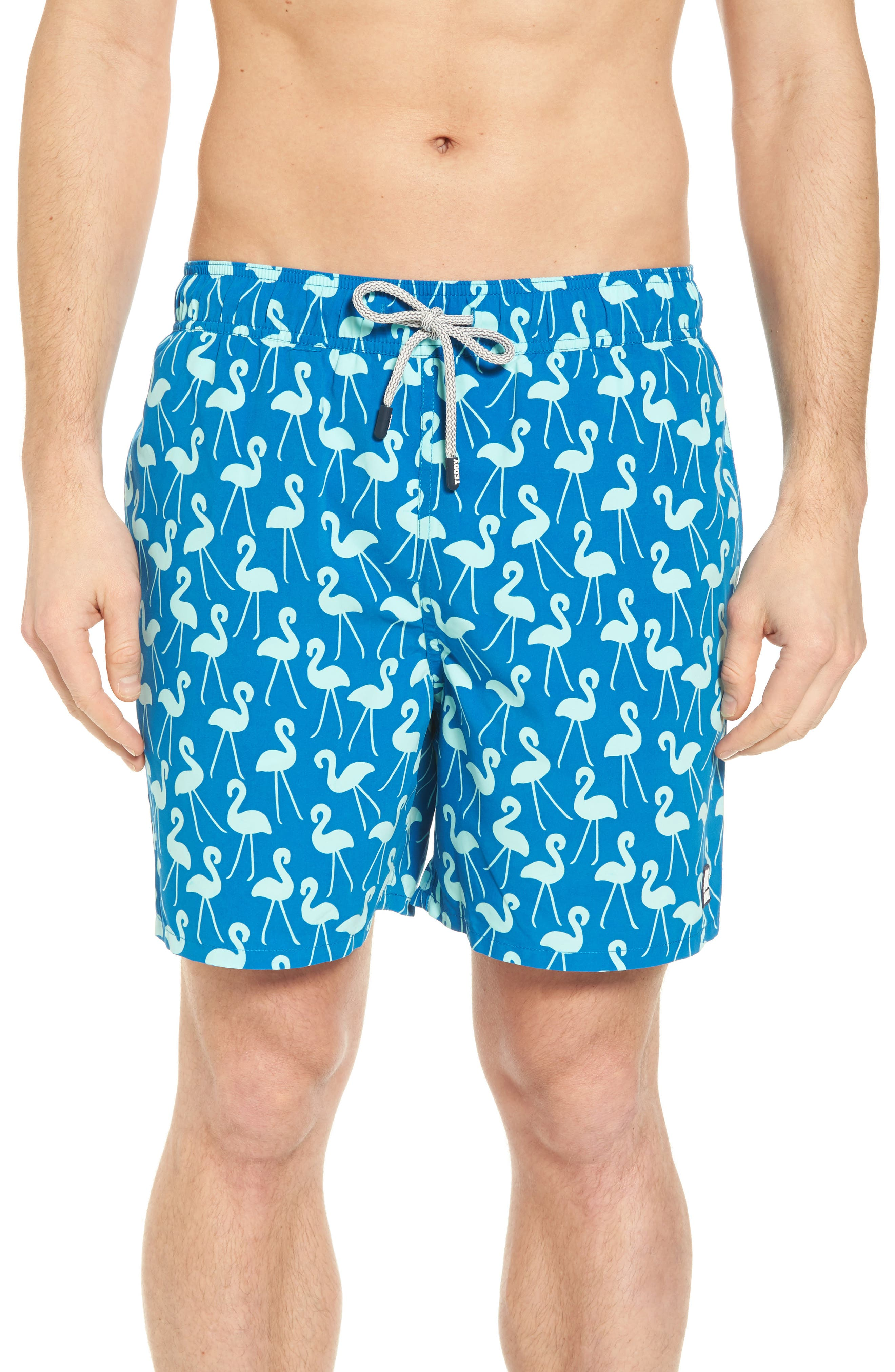 Flamingo Print Swim Trunks,                             Main thumbnail 1, color,                             Sky Blue