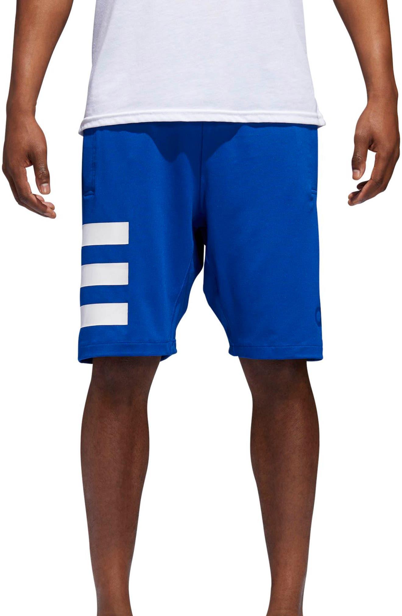 SB Hype Icon Shorts,                         Main,                         color, Collegiate Royal / White