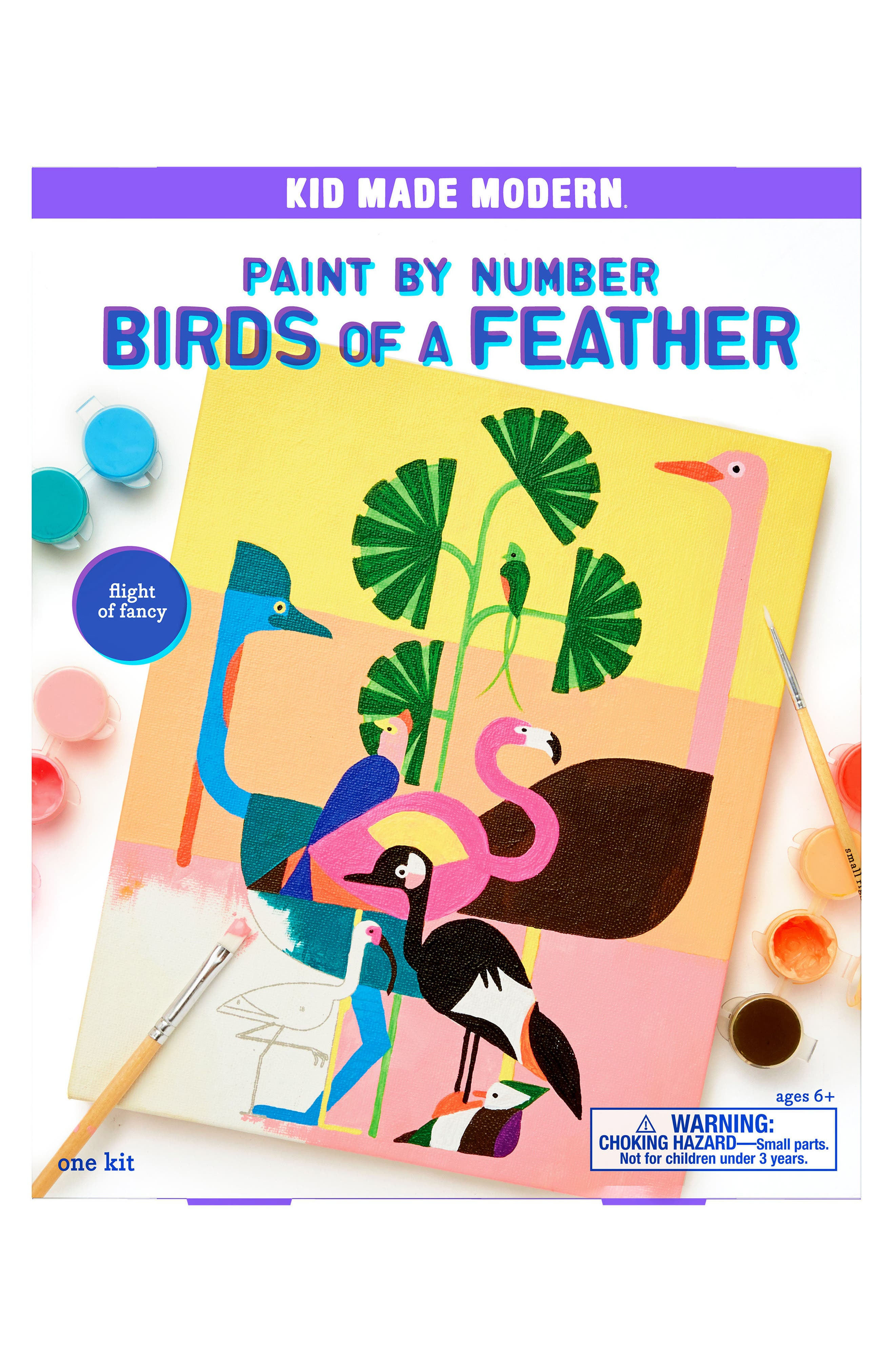 Kid Made Modern Birds of a Feather Paint by Number Kit