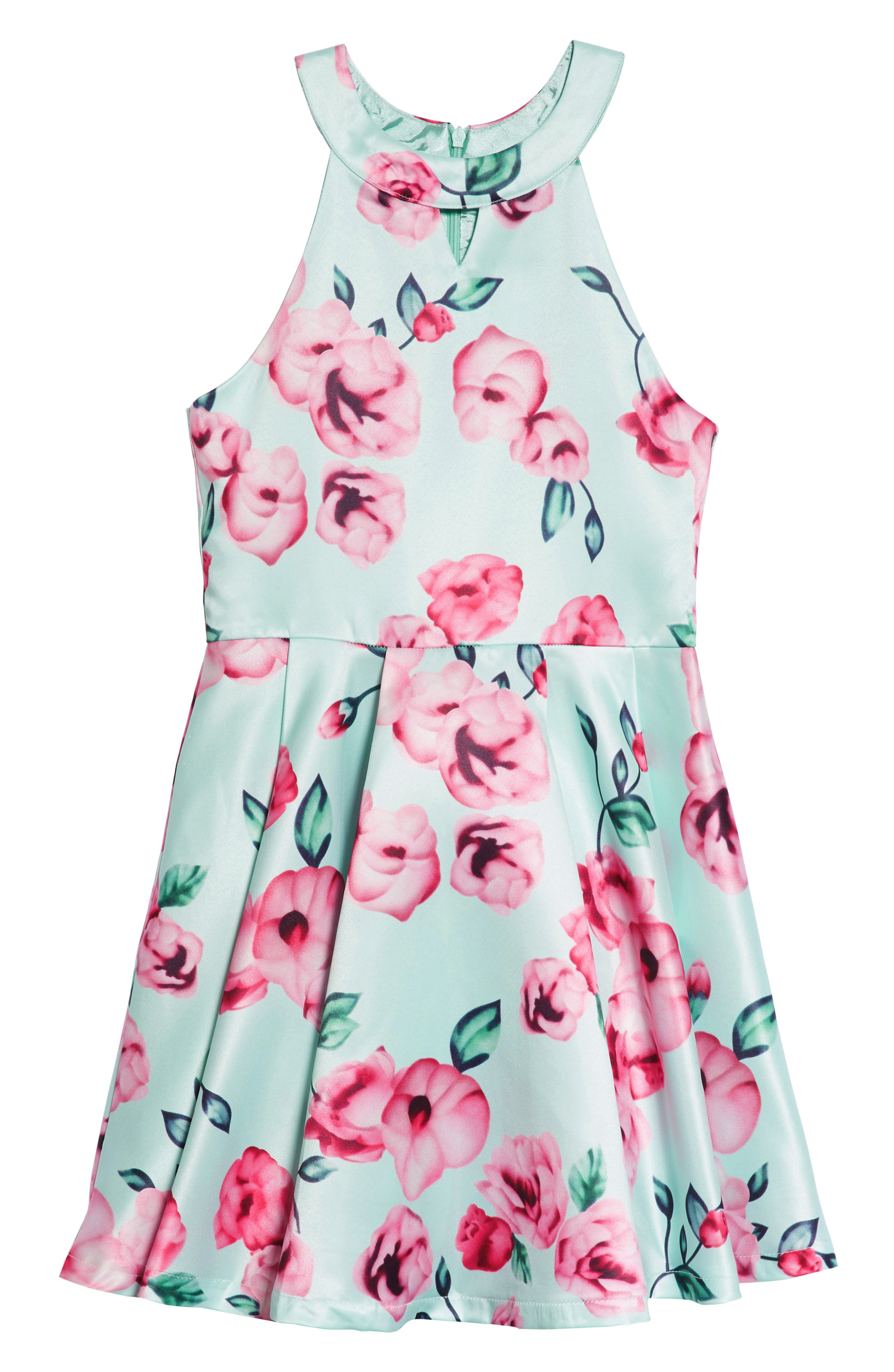Main Image - Elisa B Floral Fit & Flare Dress (Big Girls)