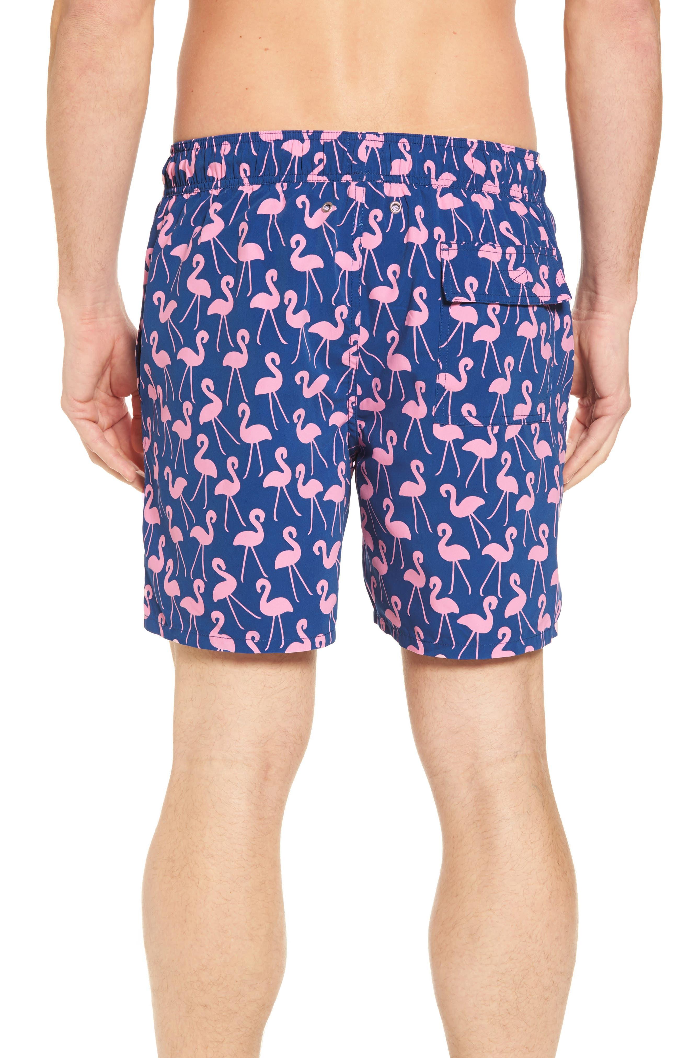 Flamingo Print Swim Trunks,                             Alternate thumbnail 2, color,                             Rose / Blue