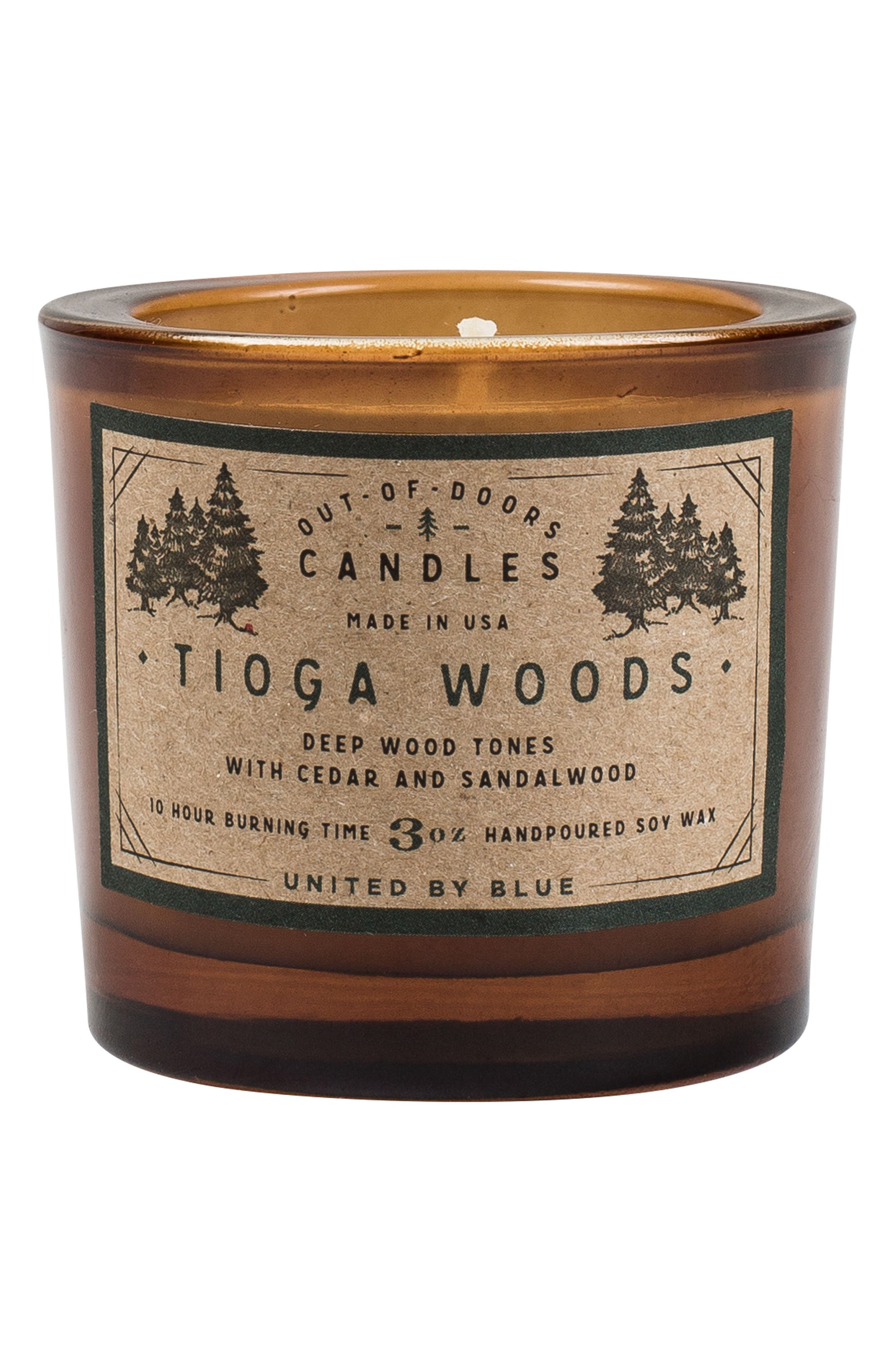 Tioga Woods Out of Doors Scented Candle,                             Main thumbnail 1, color,                             Tioga Woods