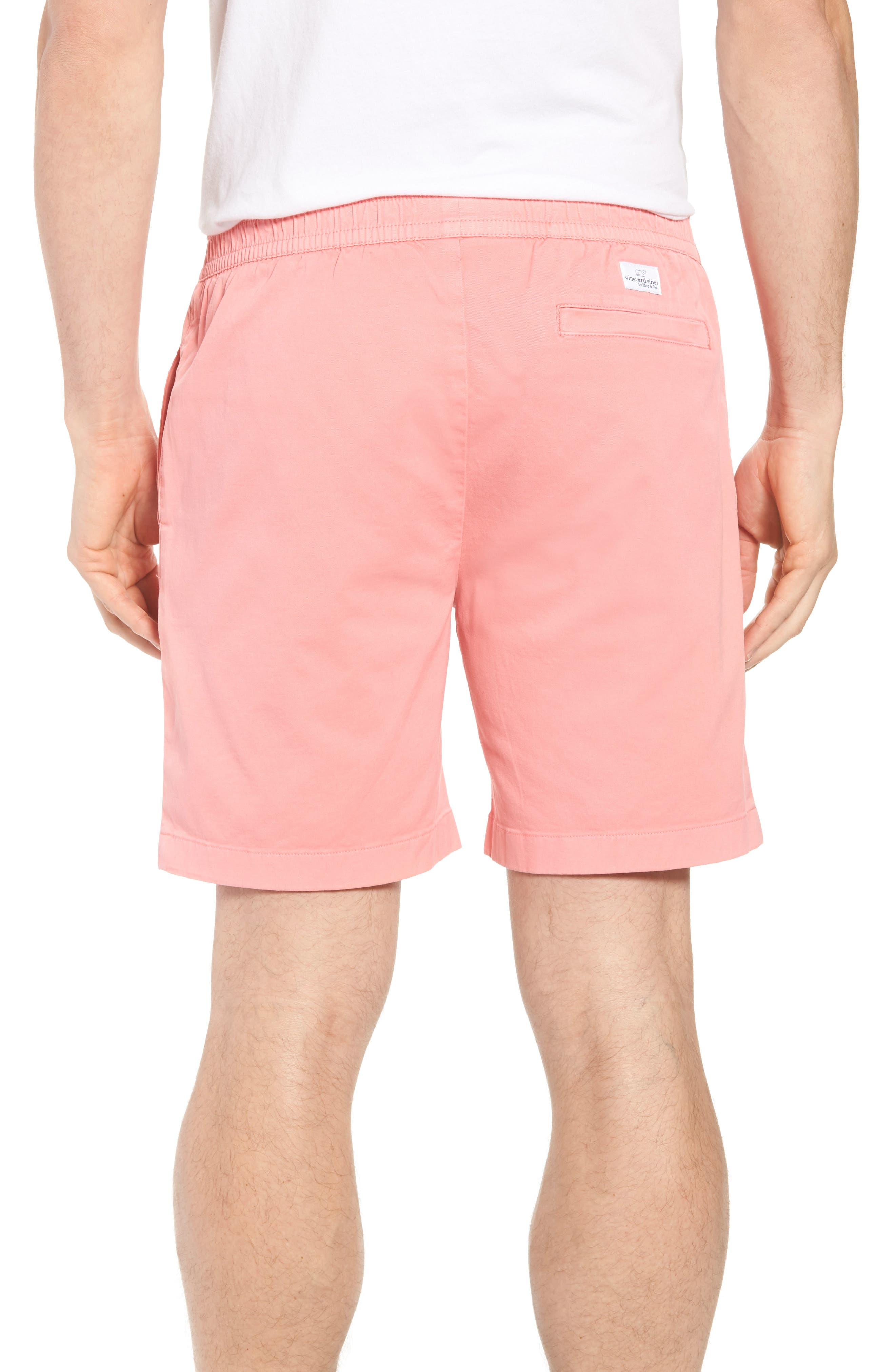 Jetty Stretch Cotton Shorts,                             Alternate thumbnail 2, color,                             Cape Coral