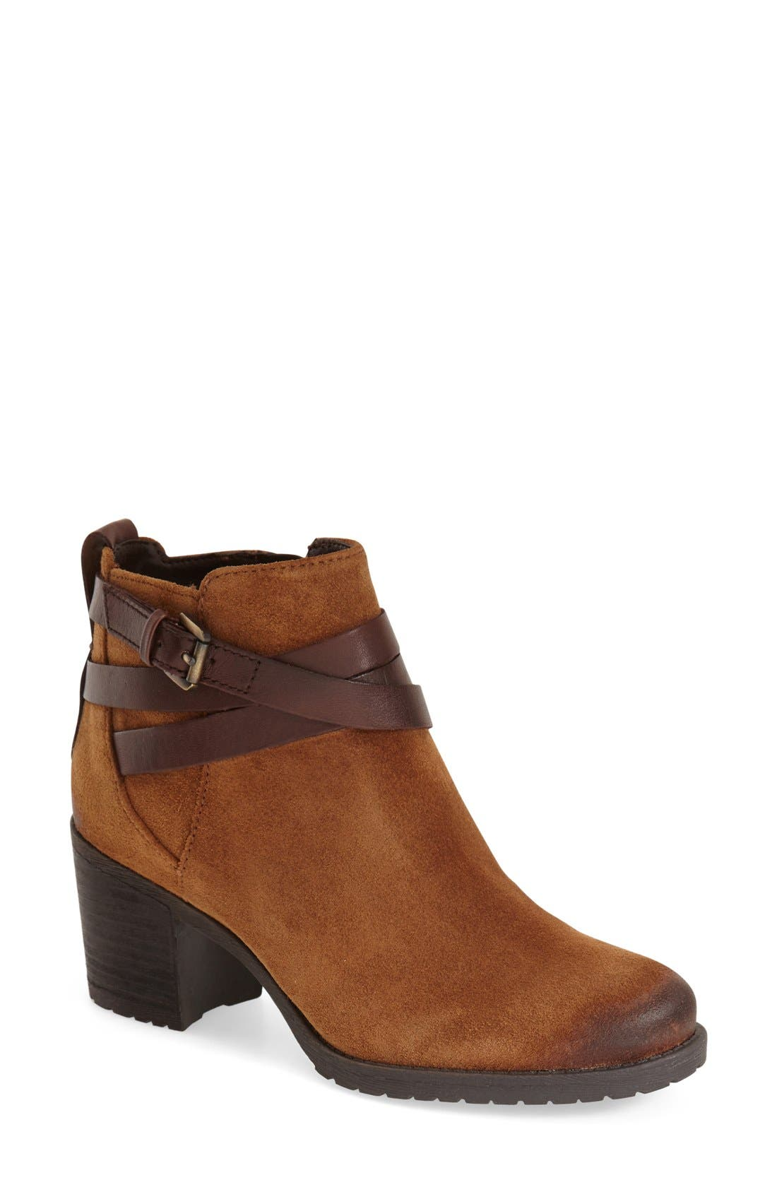 'Hannah' Belted Chelsea Bootie,                         Main,                         color, Mocha Latte/ Sienna