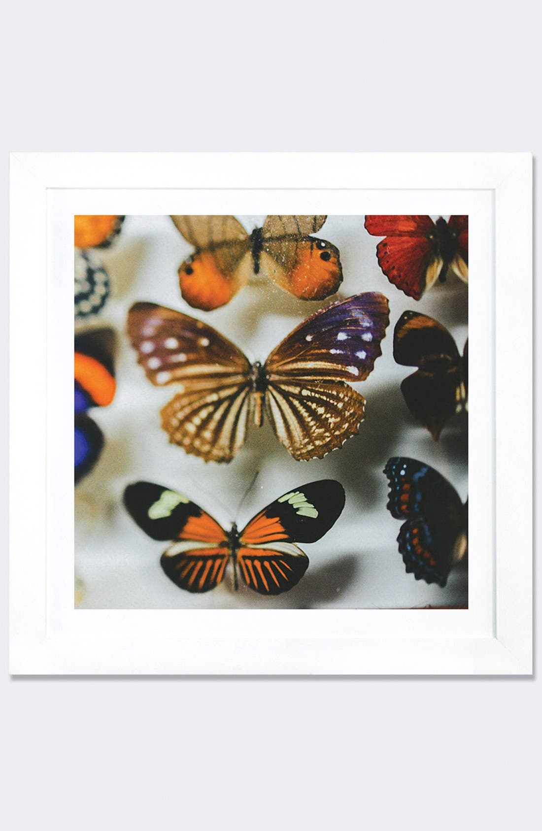 'Fairy Collection' Framed Fine Art Print,                         Main,                         color, Brown