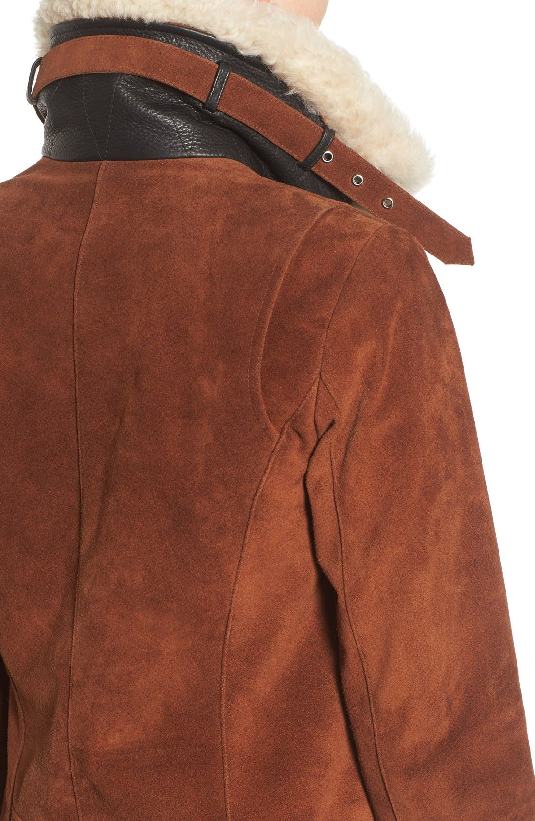 Alternate Image 4  - Andrew Marc Suede Jacket with Genuine Shearling Collar
