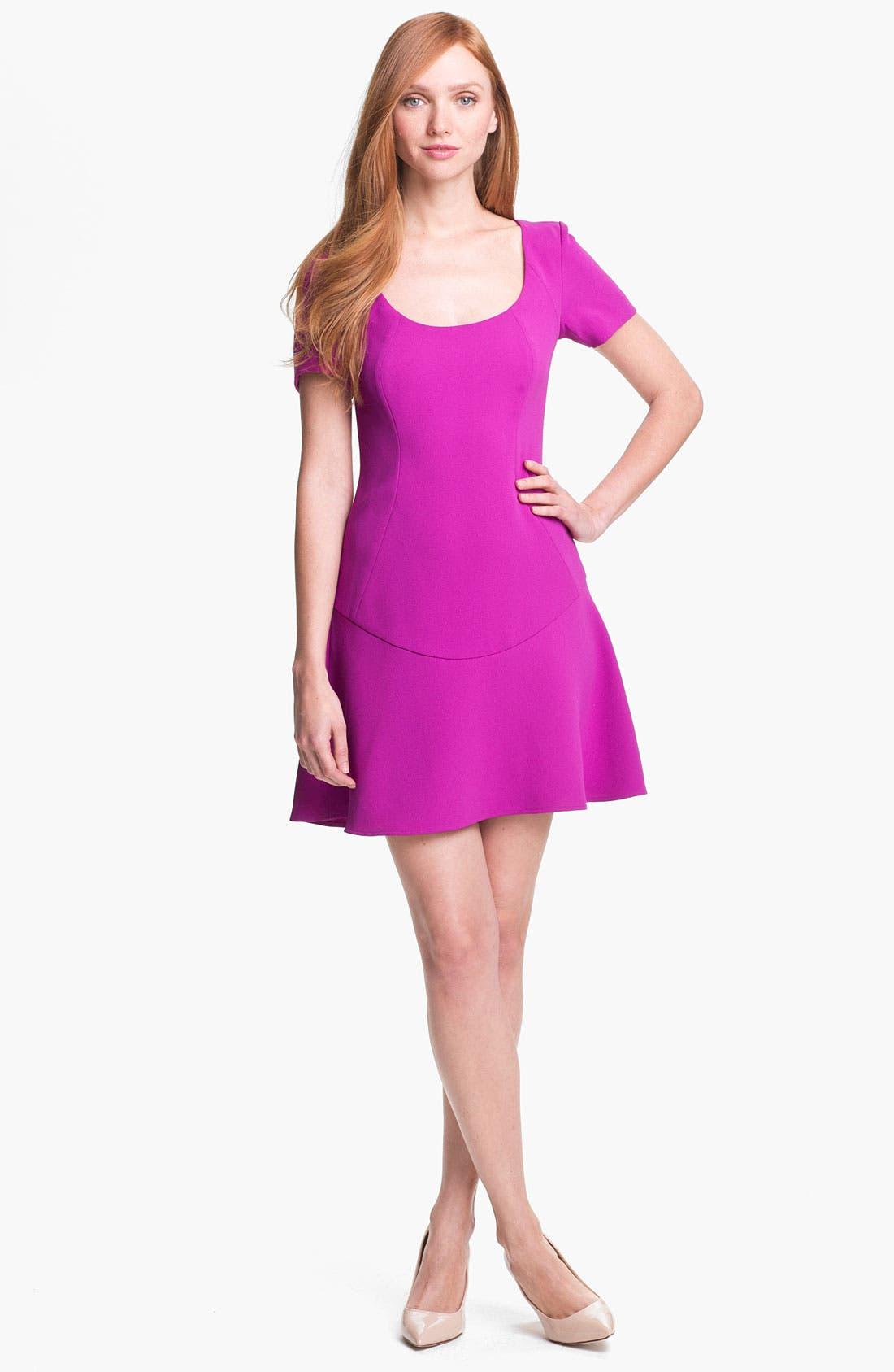 Alternate Image 1 Selected - Rachel Roy A-Line Minidress