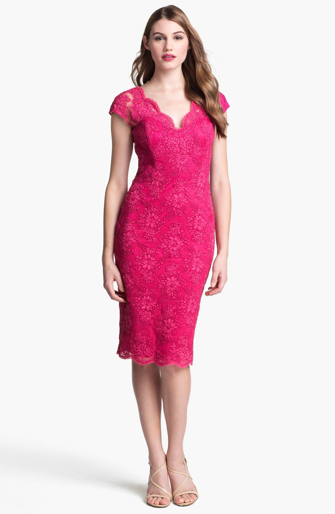 Alternate Image 1 Selected - David Meister Cap Sleeve Lace Sheath Dress