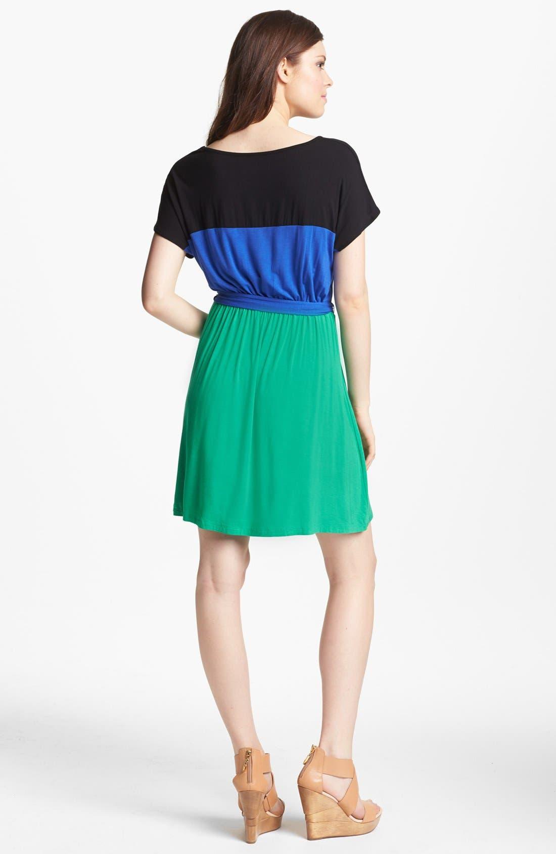Alternate Image 2  - kensie Colorblock Knit Dress