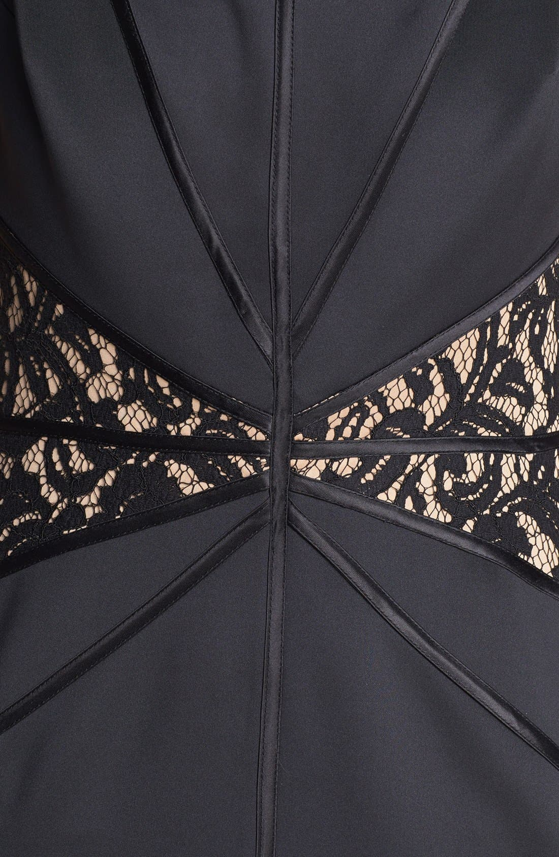 Alternate Image 3  - Tadashi Shoji Lace Inset Jersey Sheath Dress