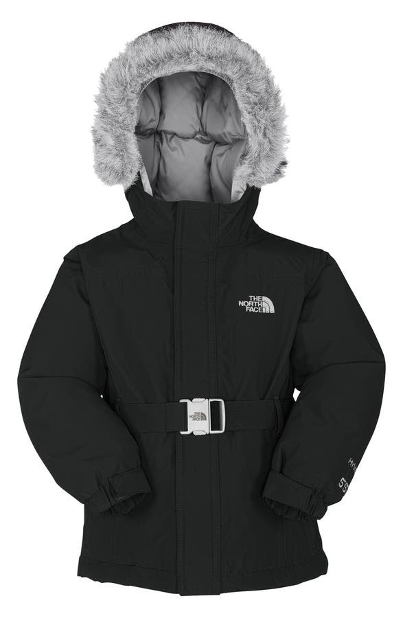The North Face 'Greenland' Waterproof 550-Fill Down Jacket ...