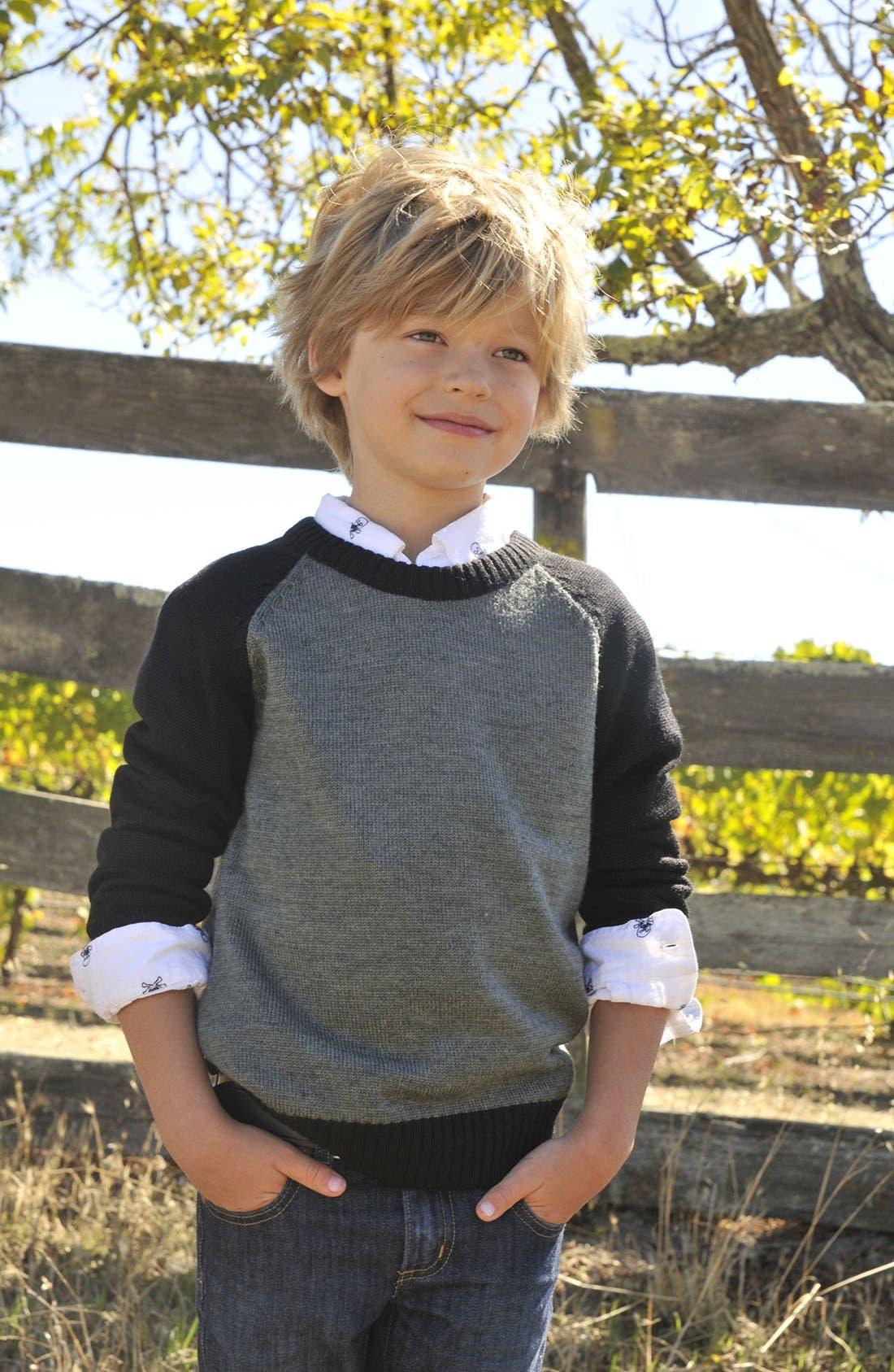 Alternate Image 2  - Peek 'Clayton' Sweater (Toddler Boys, Little Boys & Big Boys)
