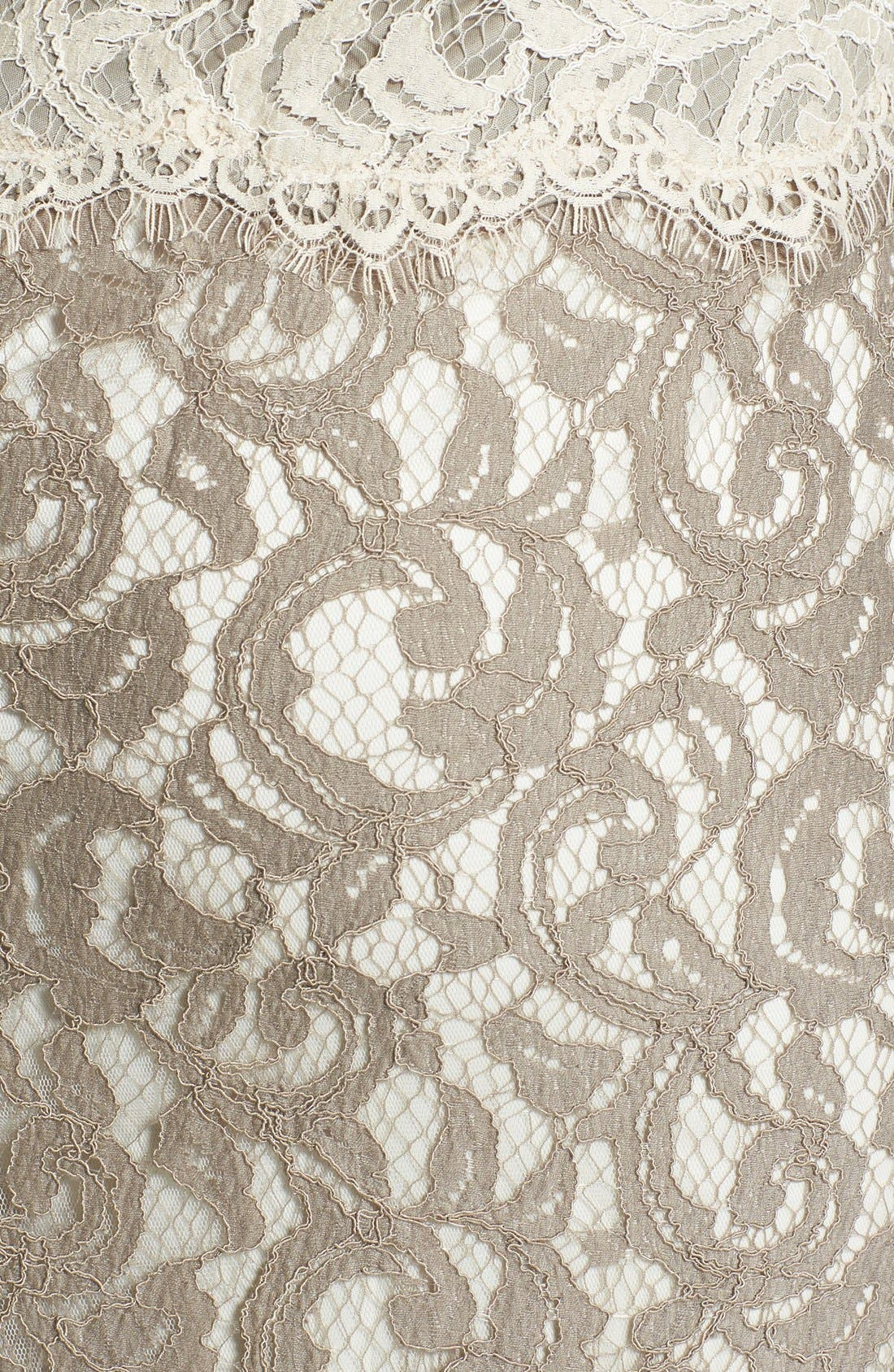 Alternate Image 3  - Tadashi Shoji Mock Two Piece Lace Gown (Regular & Petite)