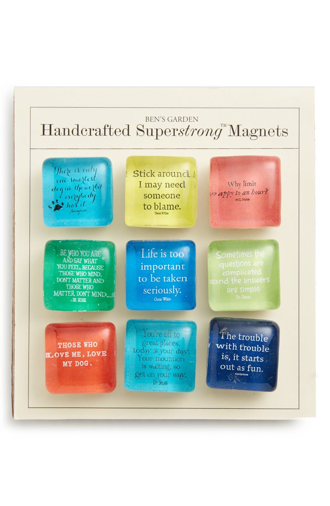Ben's Garden 'Bright Scripts' Superstrong™ Magnets (Set of  9)