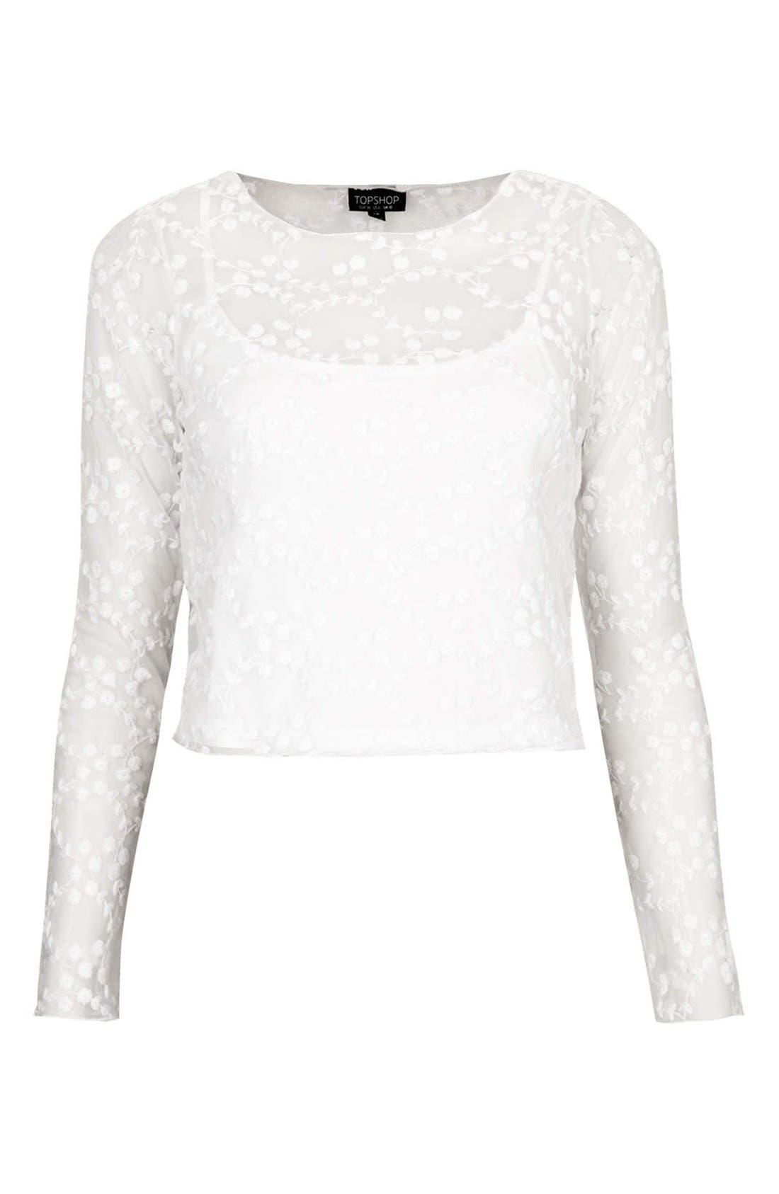 Alternate Image 3  - Topshop Embroidered Floral Mesh Top