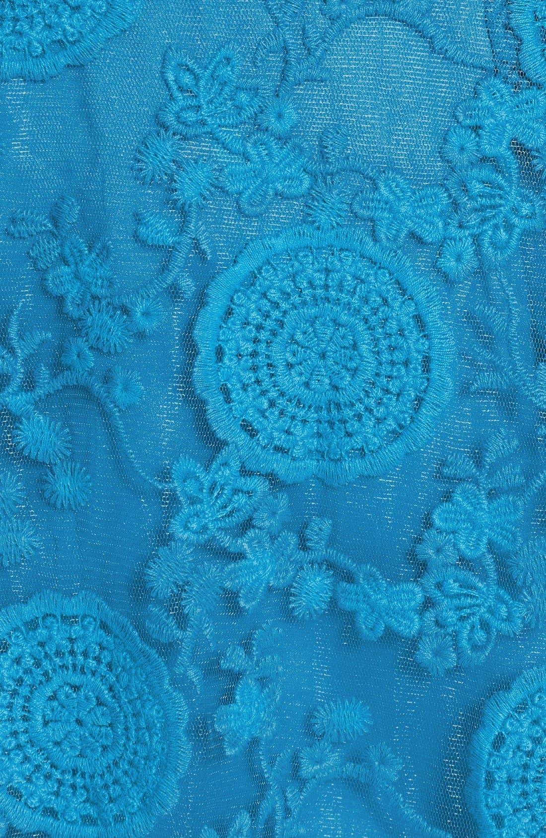 Alternate Image 3  - Adrianna Papell 'Pleats' Lace Dress (Plus Size)