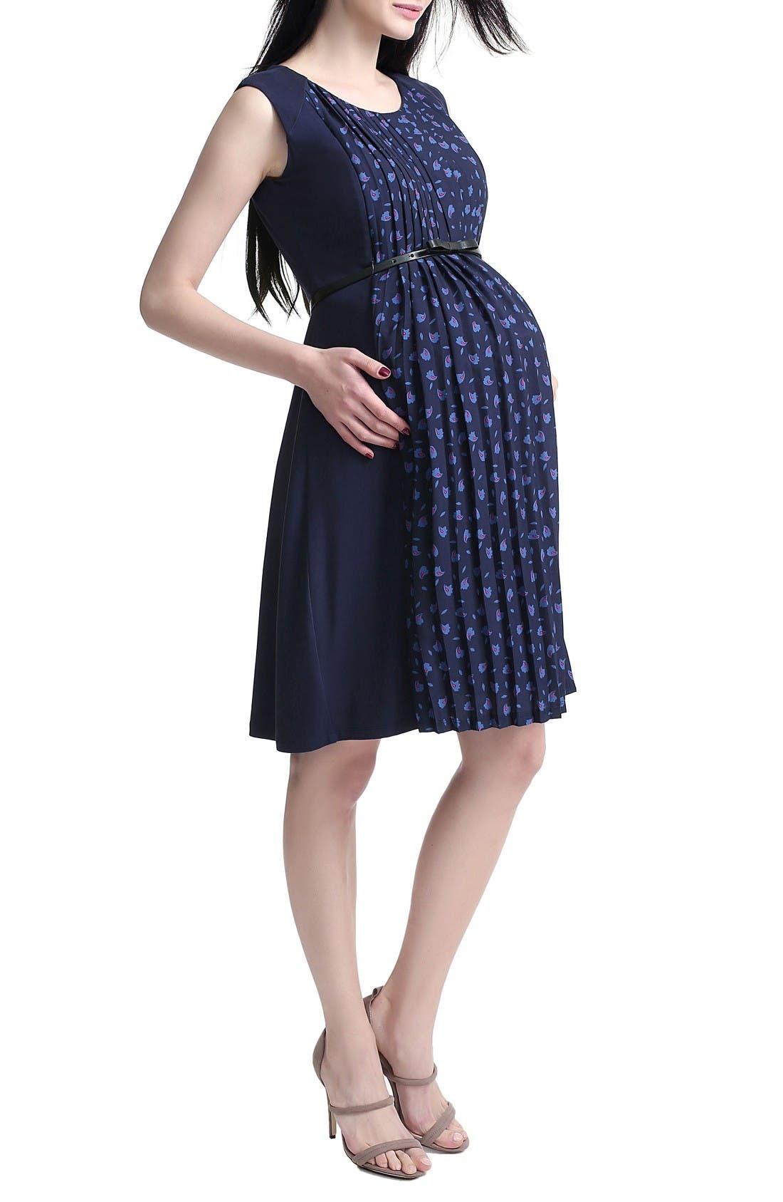 Alternate Image 3  - Kimi and Kai Rana Pleated Maternity/Nursing Dress