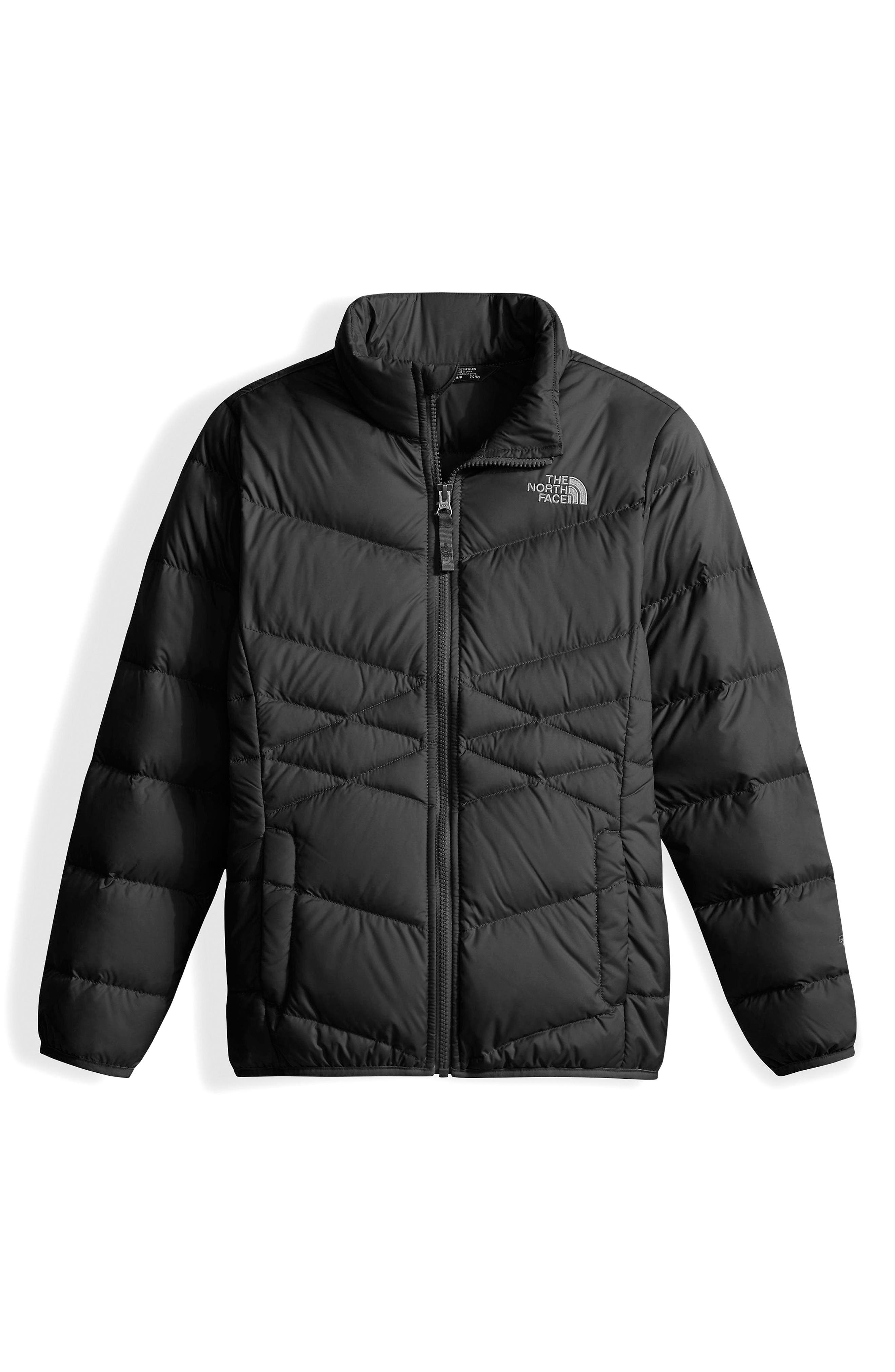 Andes Water Resistant Down Jacket,                         Main,                         color, Tnf Black
