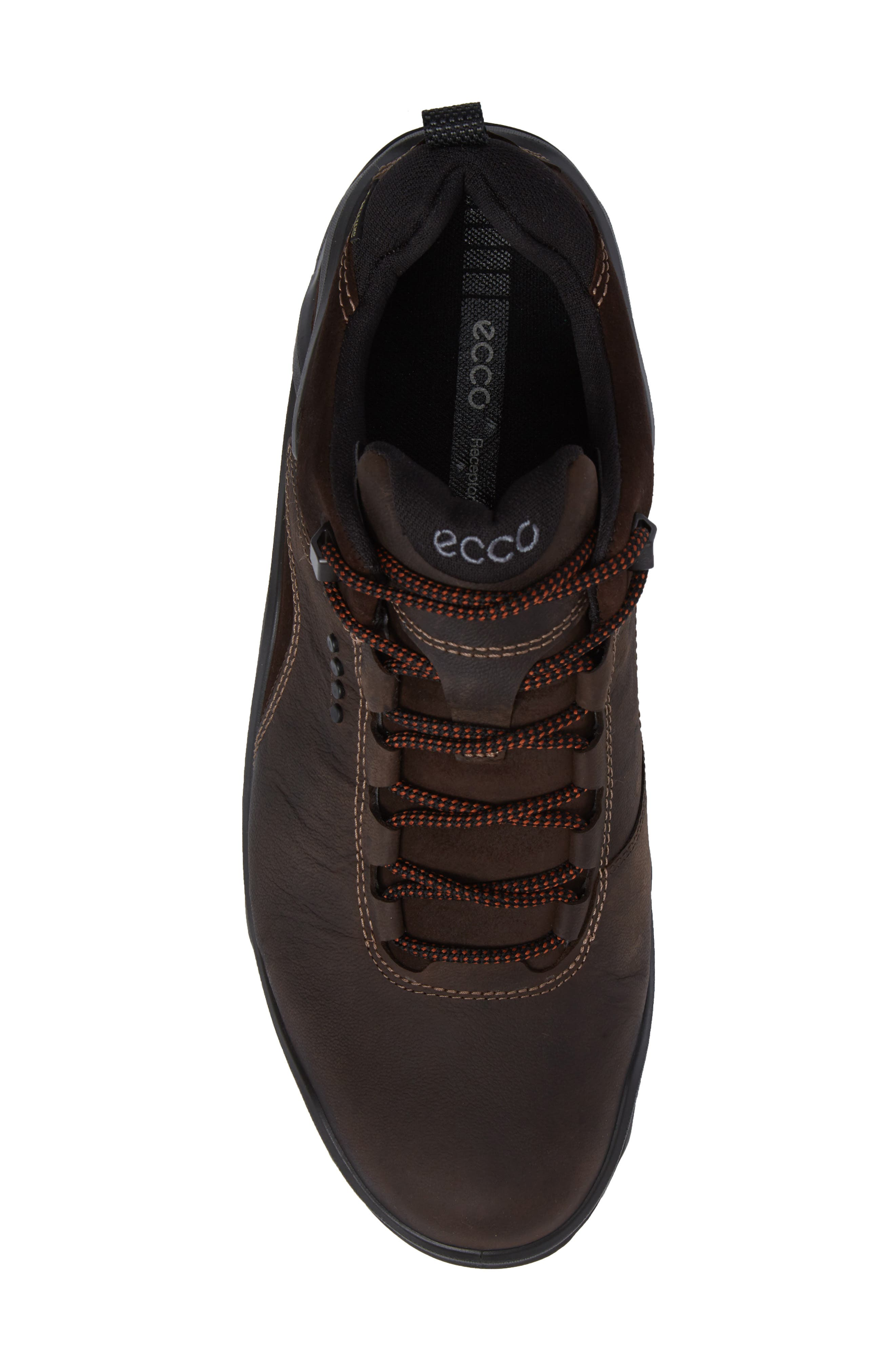 Terra Evo GTX Low Hiking Shoe,                             Alternate thumbnail 5, color,                             Coffee/ Mocha Nubuck