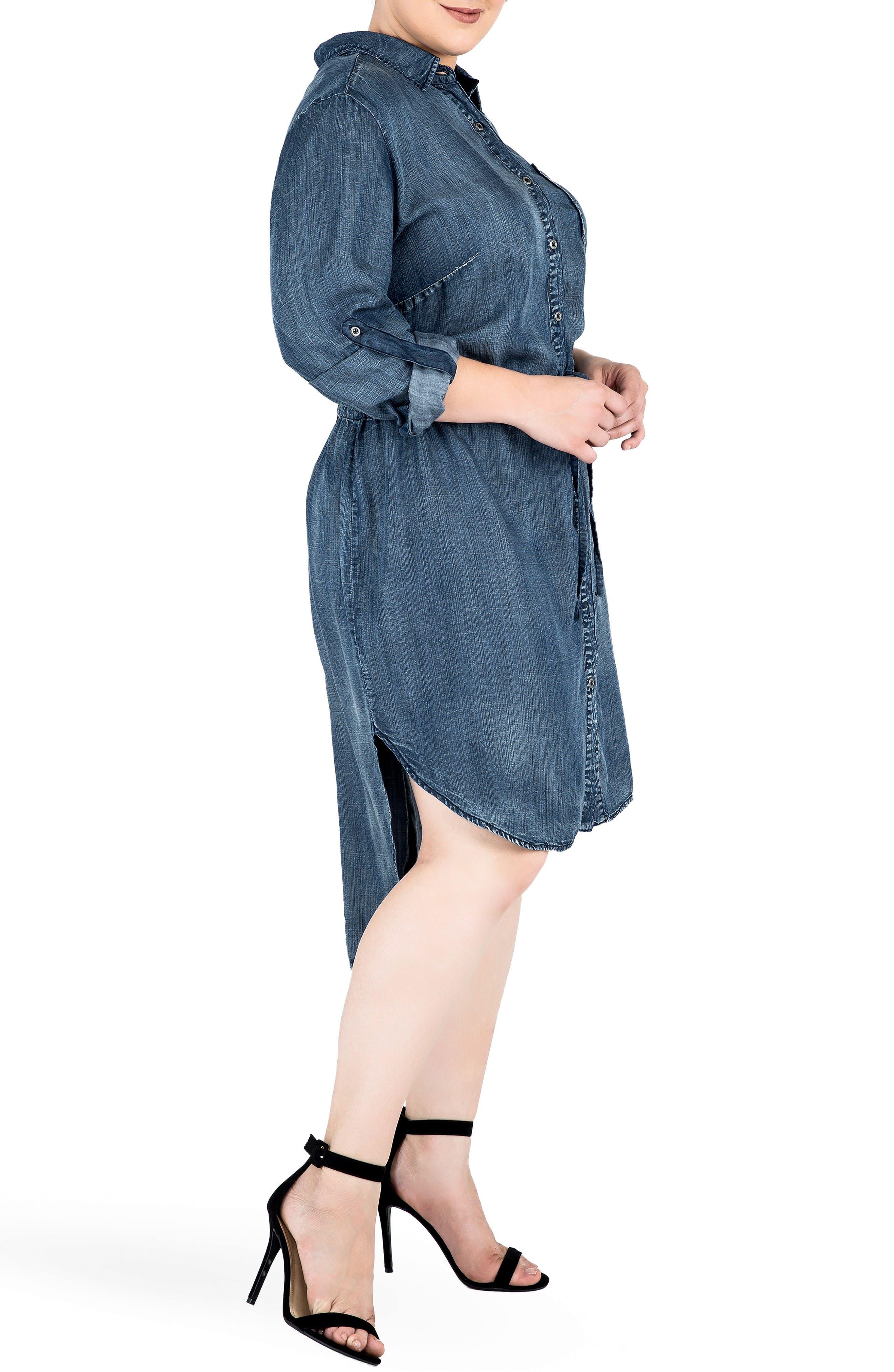 Alternate Image 3  - Standards & Practices Paige Denim Shirtdress (Plus Size)
